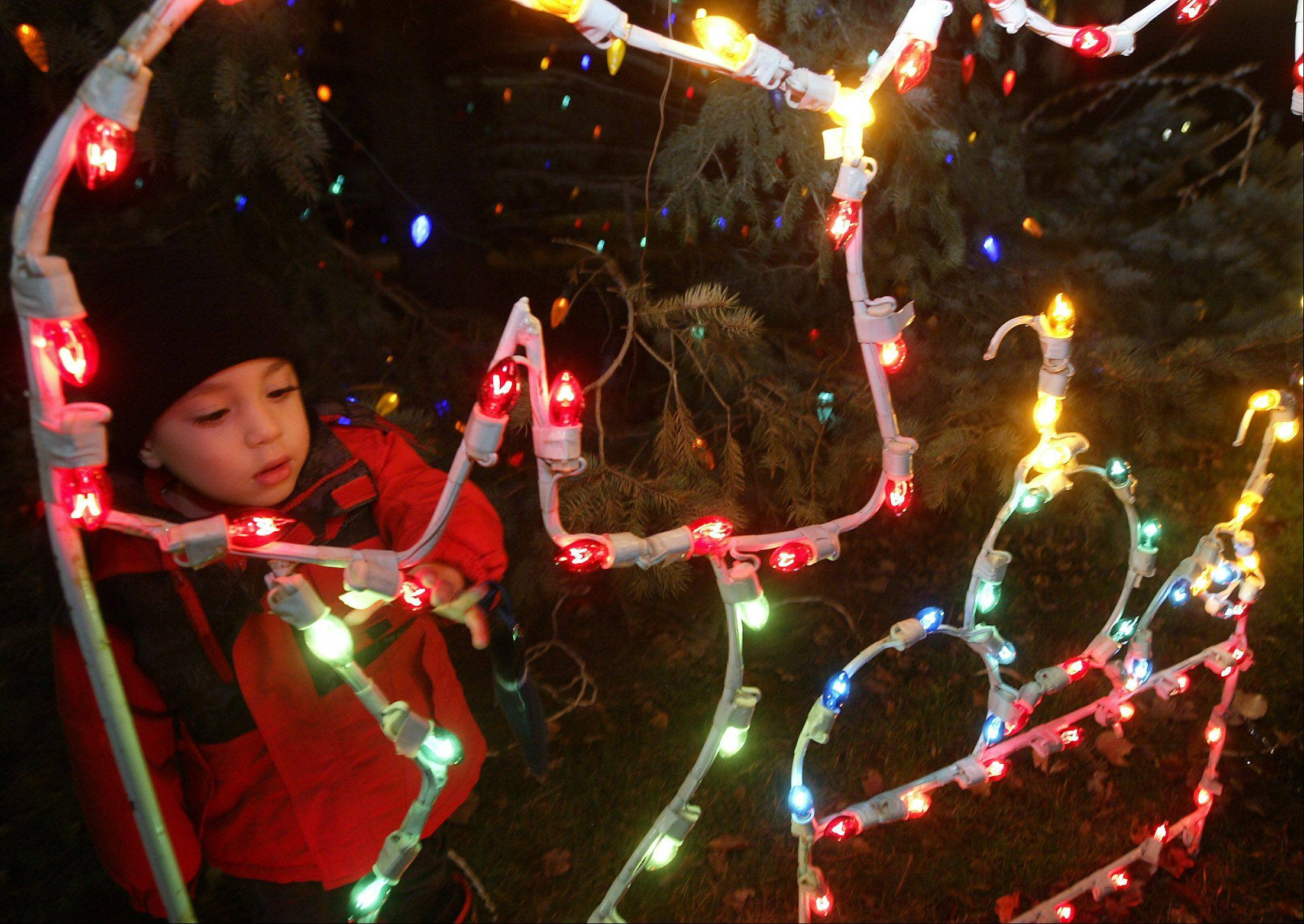 Westley Johnson, 3, of Elgin, examines lights during the last year's tree lighting ceremony in downtown Elgin. This year's tree lighting is set for 5 p.m. Saturday, Dec. 1.