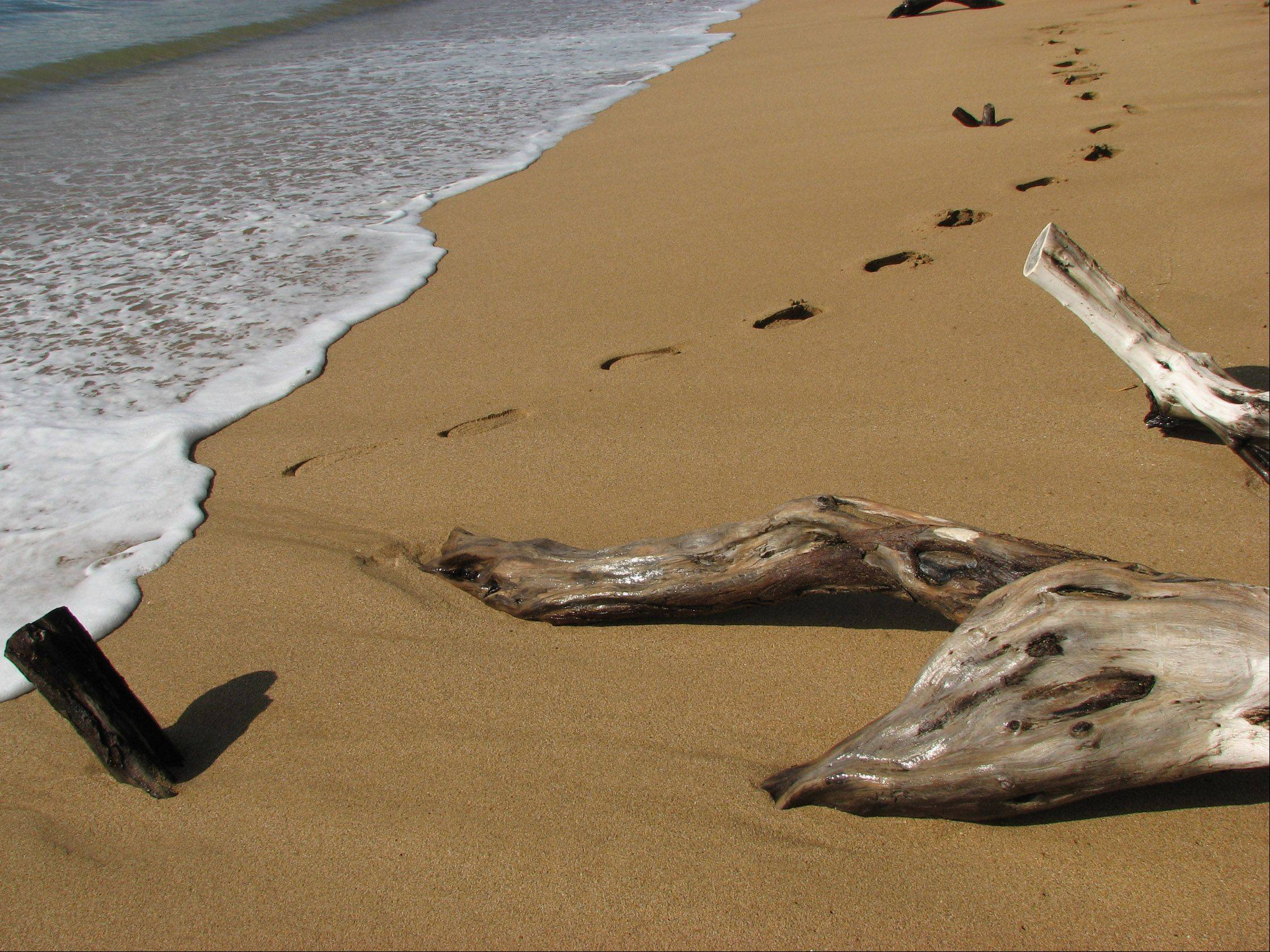 Driftwood, footsteps in the sand, and the waves create a calming effect on a Maui beach earlier this month.