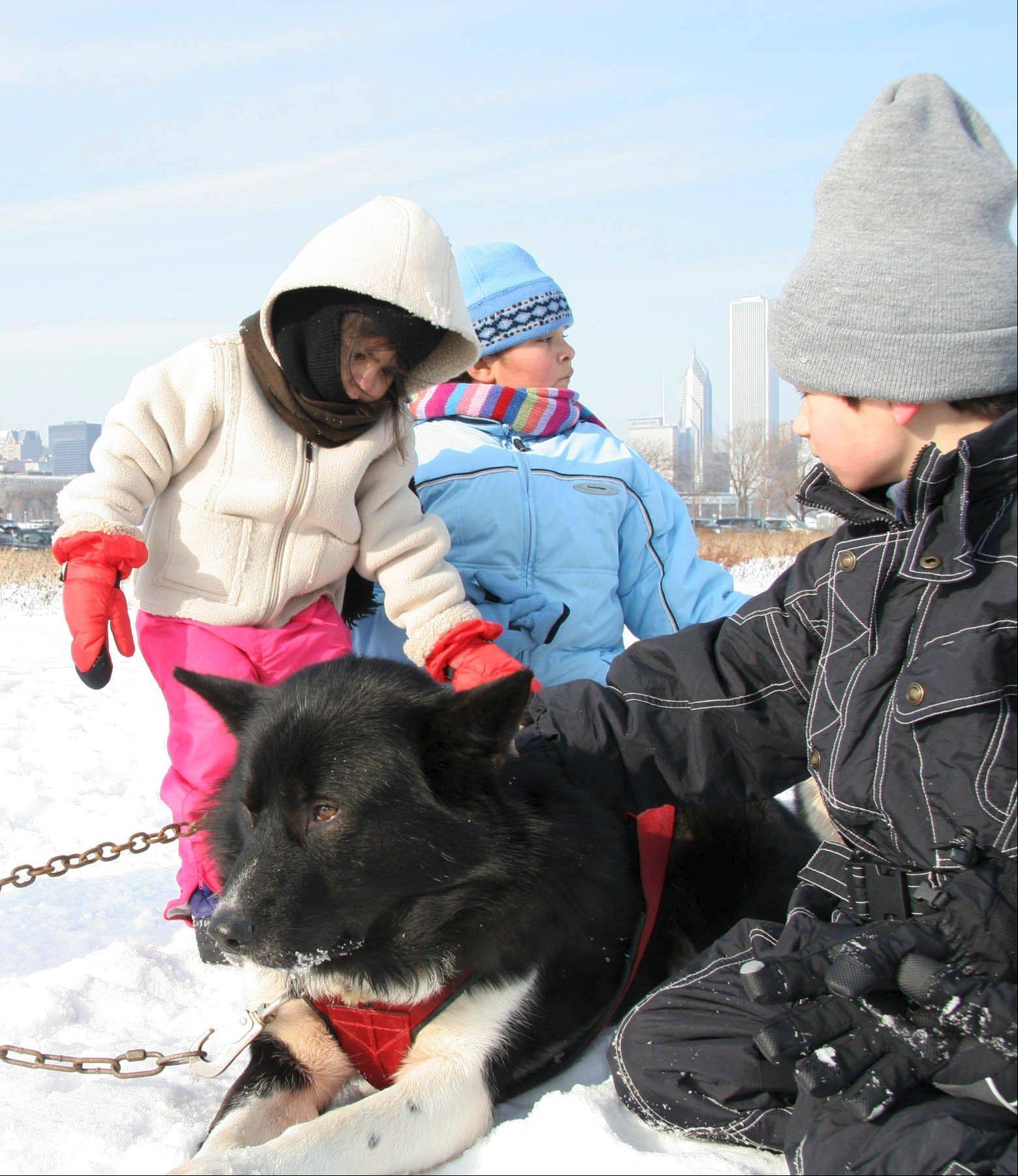 Polar Adventure Days will be held at Chicago's Northerly Island.