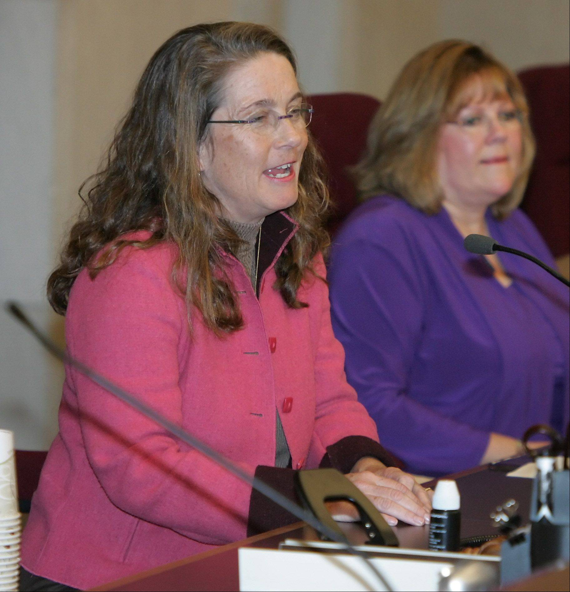 Ann B. Maine was re-elected president of the Lake County Forest Preserve board on Monday during a special meeting in Waukegan.