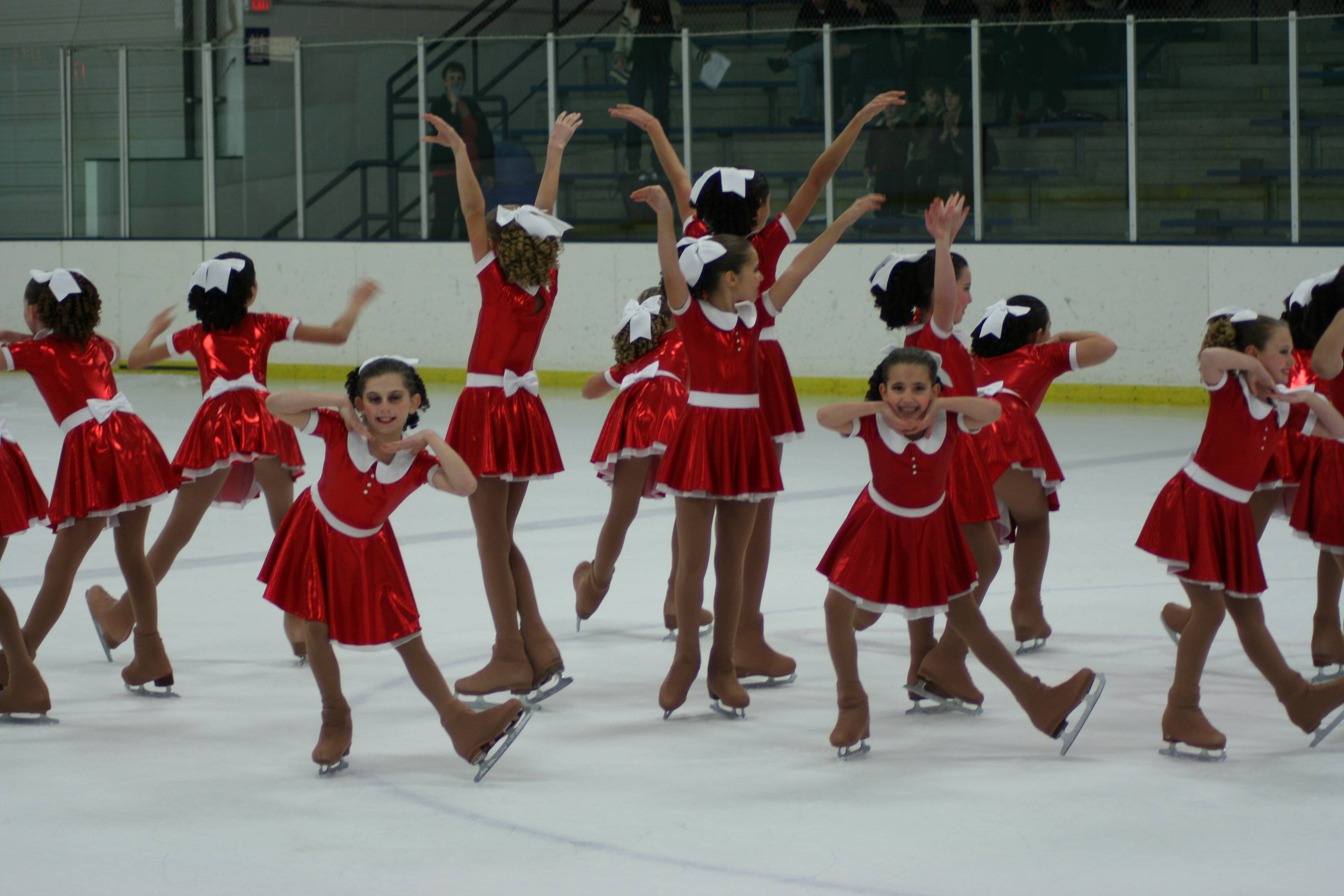 The Preliminary Team performs at the Starlights' November Exhibition at Twin Rinks Ice Pavilion in Buffalo Grove.