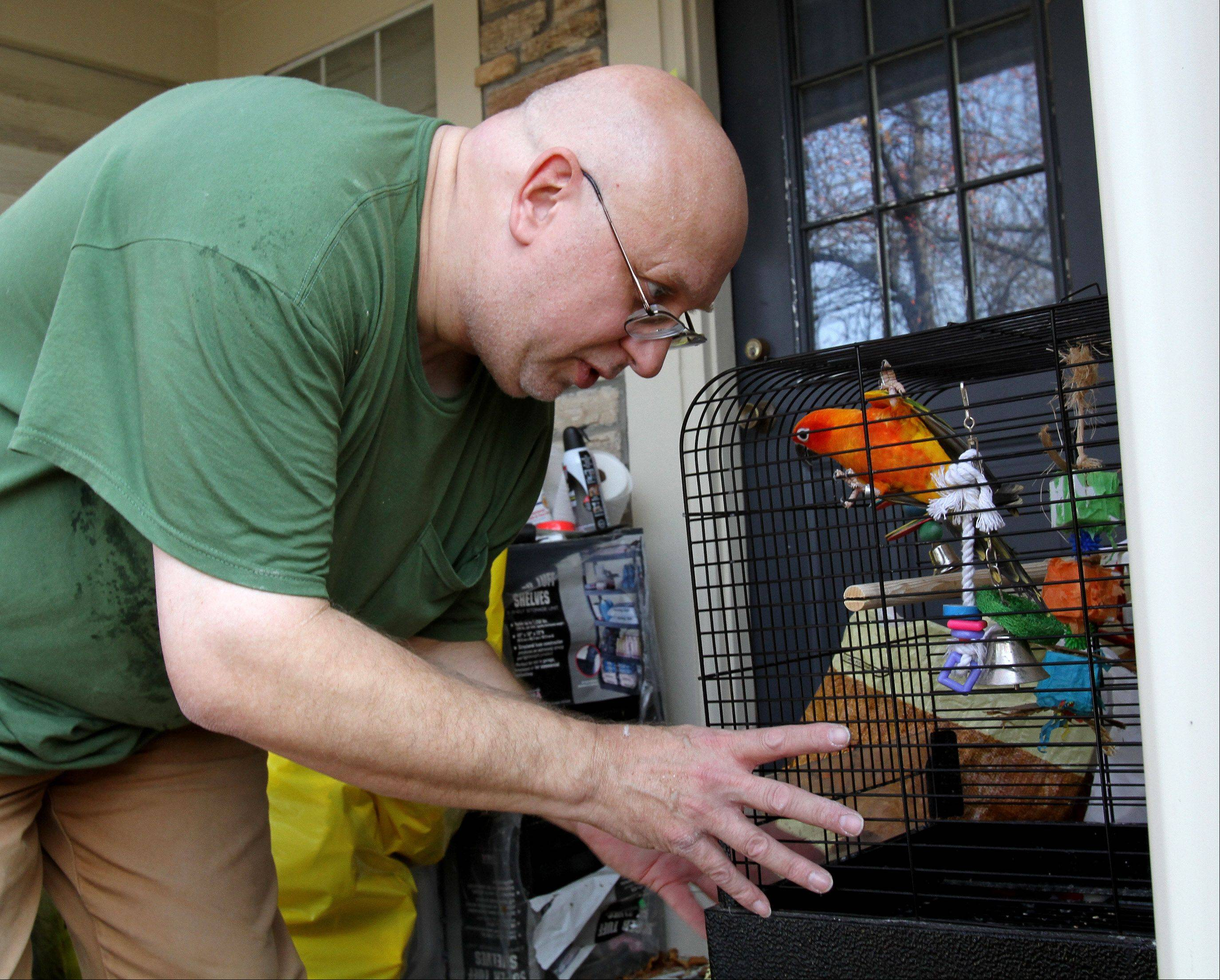 Bev Horne/bhorne@dailyherald.com ¬ Dave Skeberdis outside his Aurora townhome with one of his birds, a Sun Conure named Sweetheart.