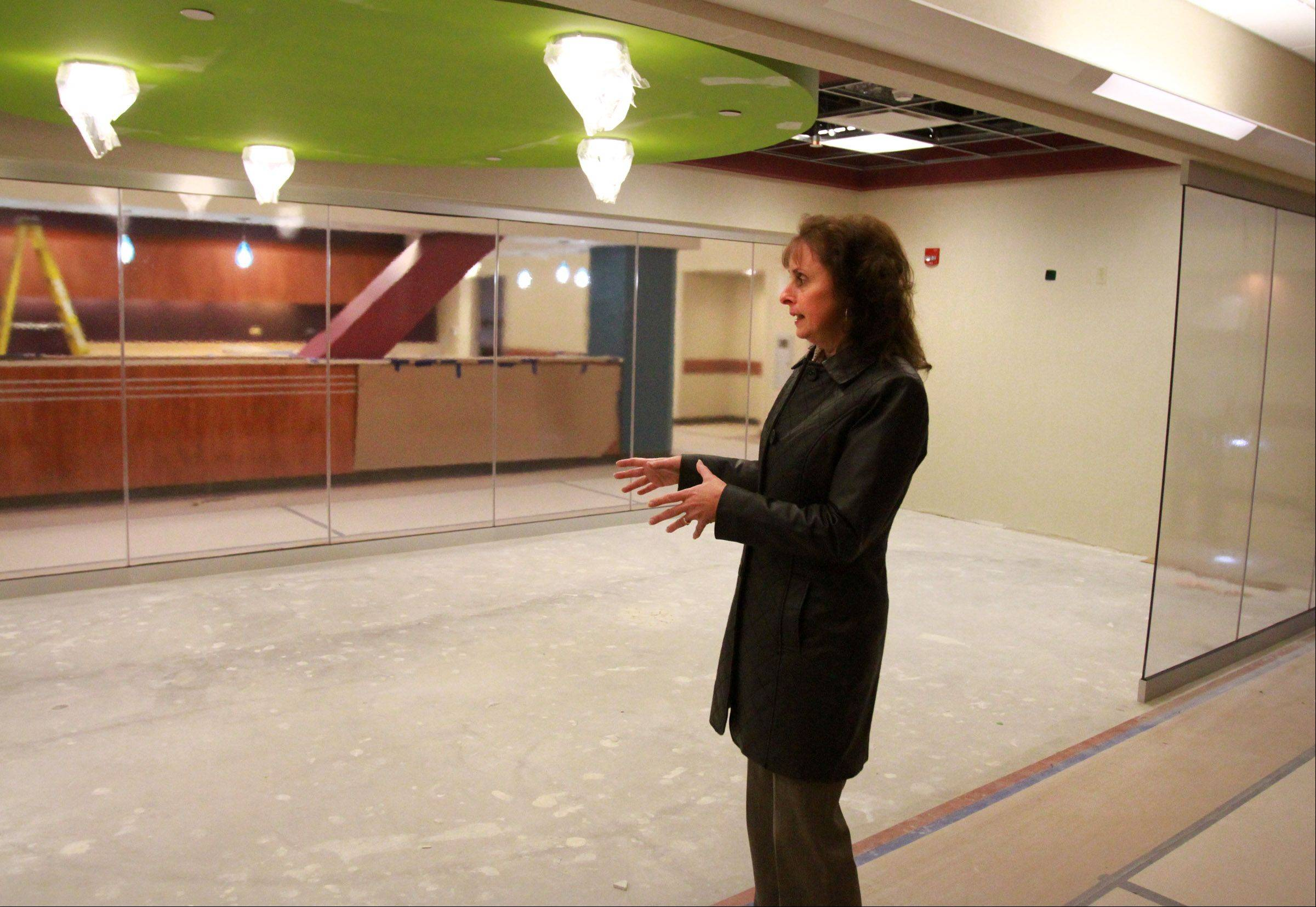 Joan Cappelletti, executive director of nursing at St. Alexius Medical Center, explains how a large aquarium will be placed in a family waiting area at the new Alexian Brothers Women and Children's Hospital in Hoffman Estates.