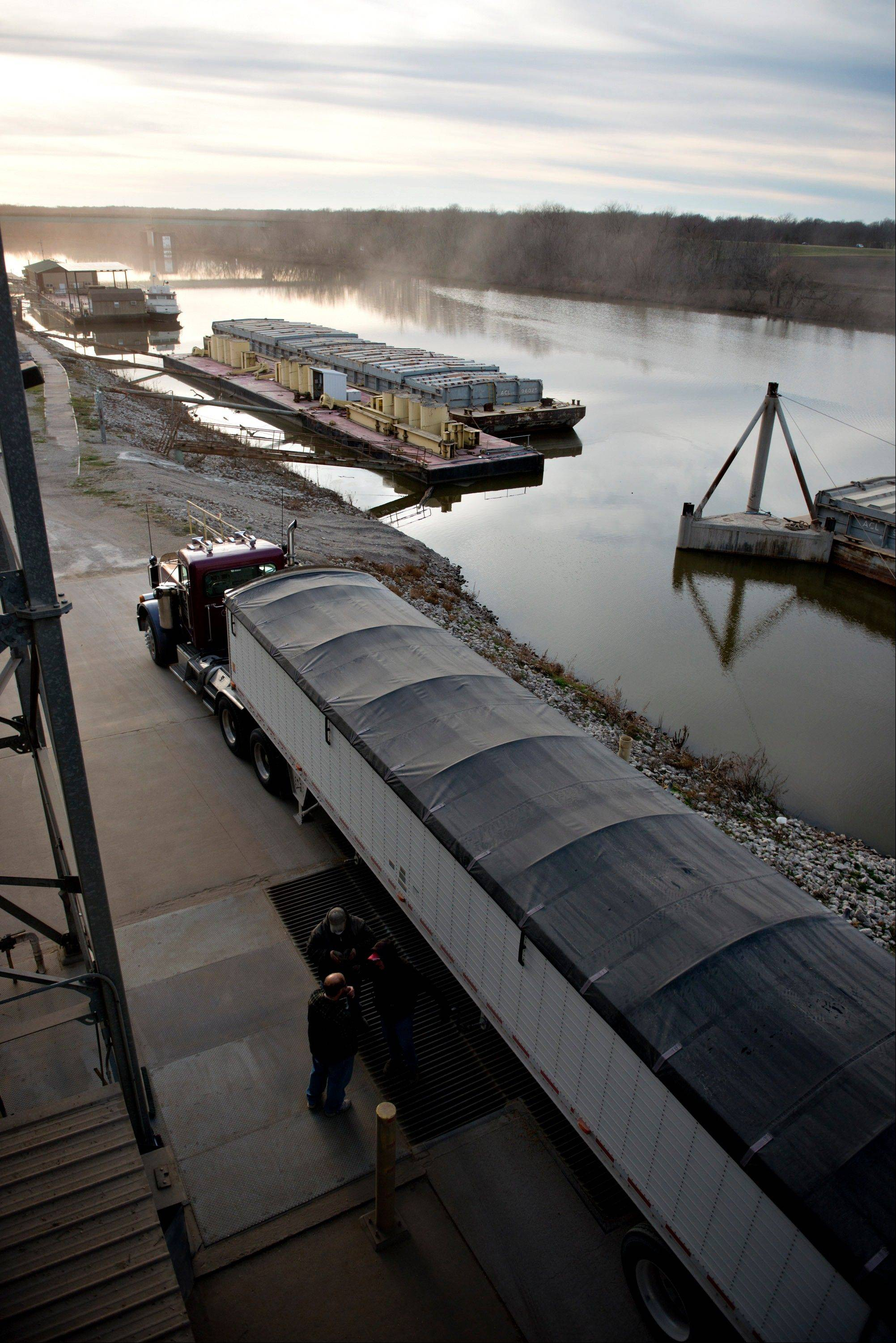 A truck drops off a load of soybeans Wednesday at the Gateway FS elevator on the Kaskaskia River, a tributary of the Mississippi River, in Evansville, Ill.