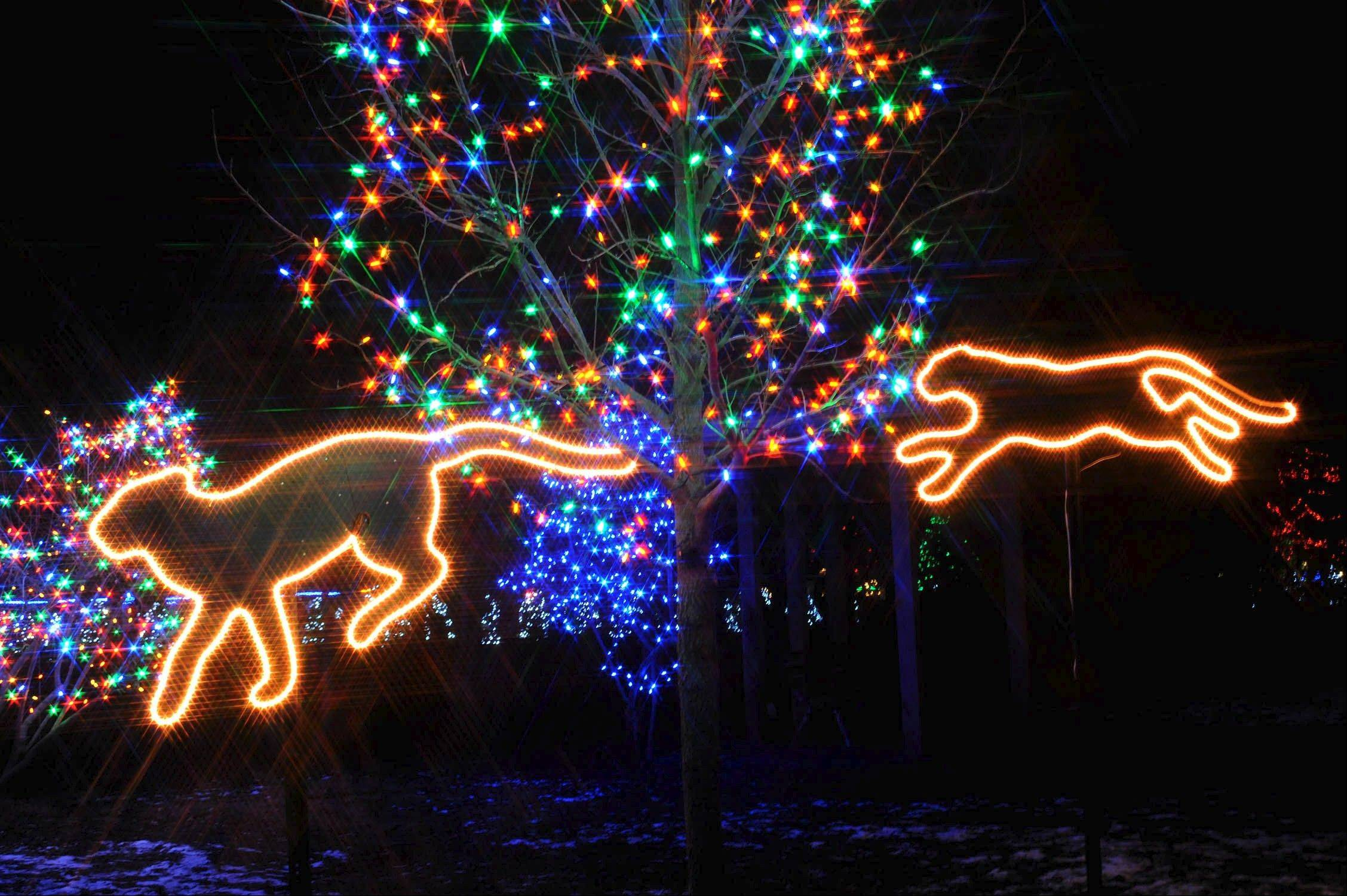 "See thousands of colorful holiday lights and bright holiday scenes at Brookfield Zoo's annual ""Holiday Magic"" light show."