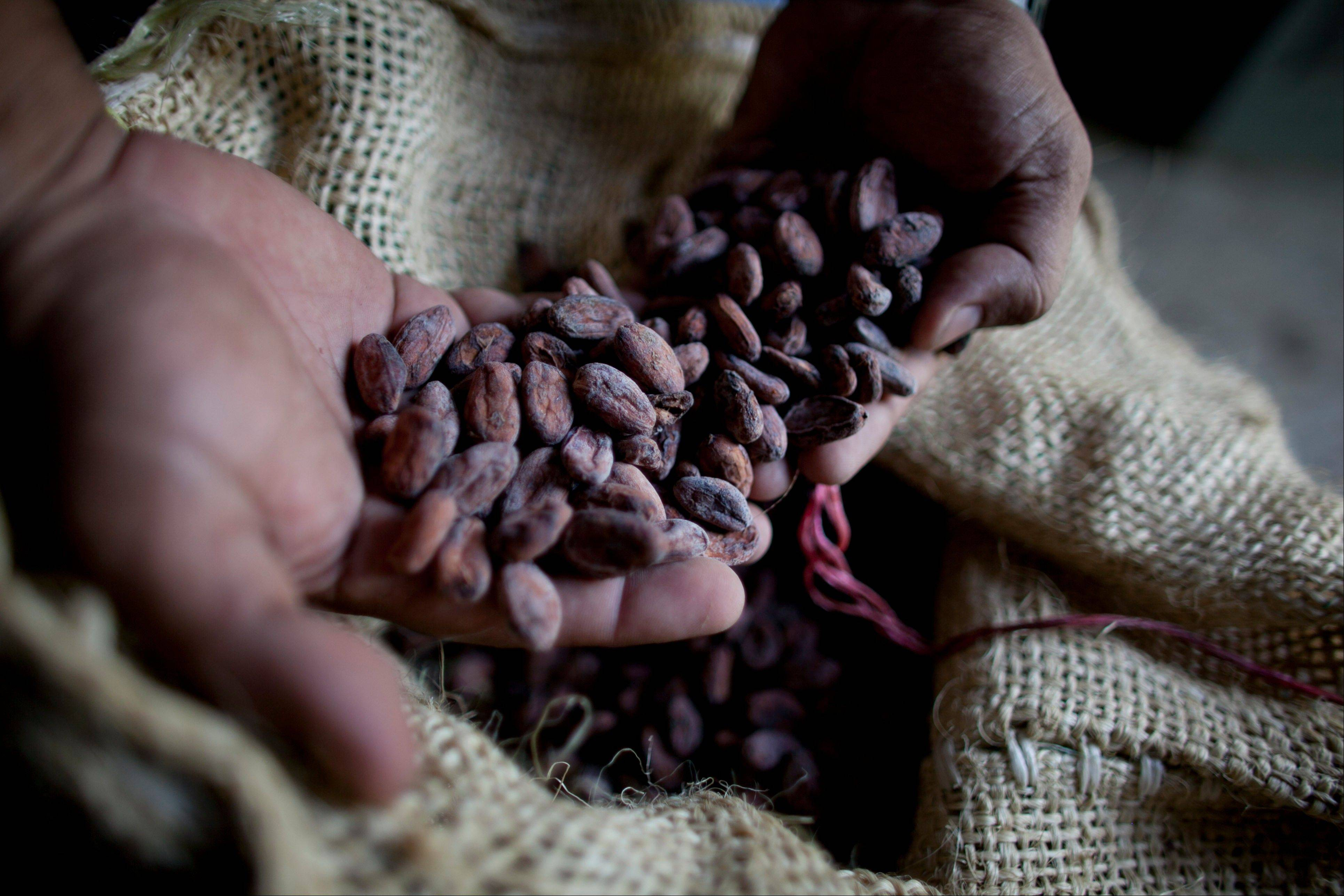A worker shows a handful of dried cacao seeds at a cacao plantation in Cano Rico, Venezuela.