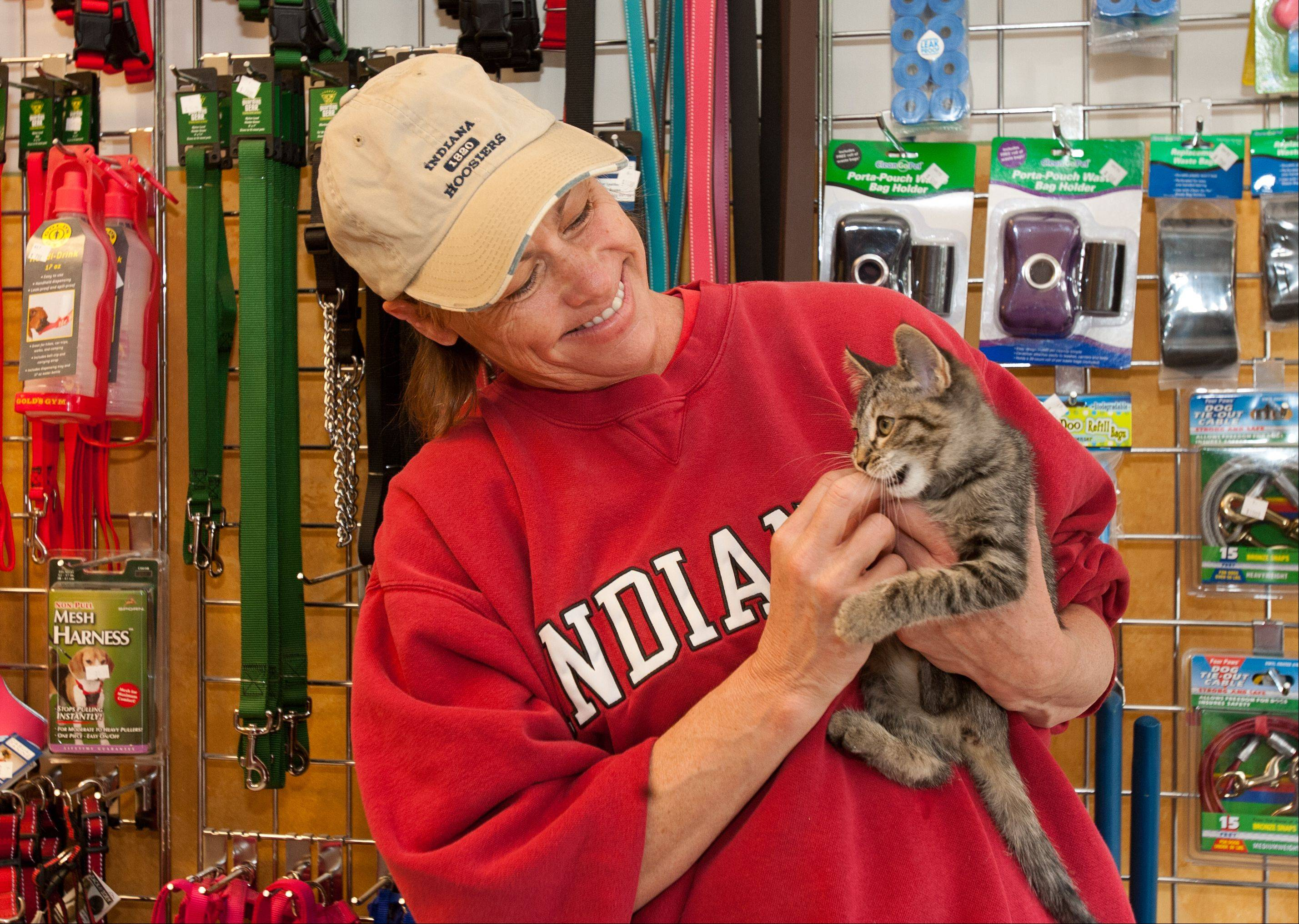 Chris Gustaitis of Naperville volunteers for the Waifs and Strays Animal Rescue group, which shelters some animals at the All Pet Pantry in Lisle.