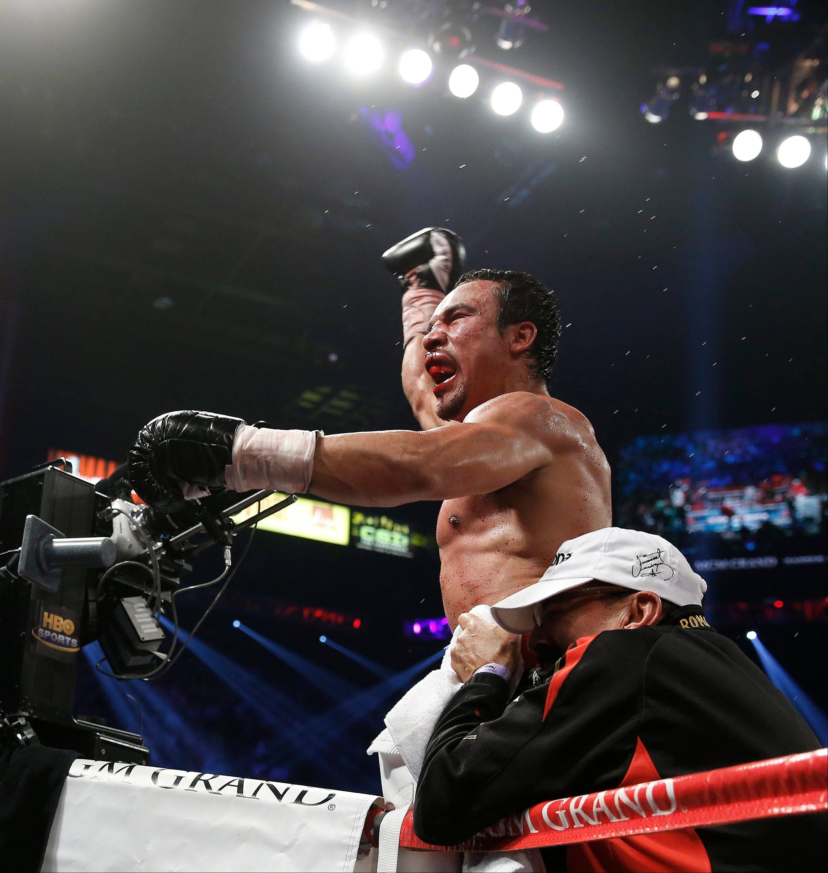 Juan Manuel Marquez celebrates his sixth-round knockout victory over Manny Pacquiao.