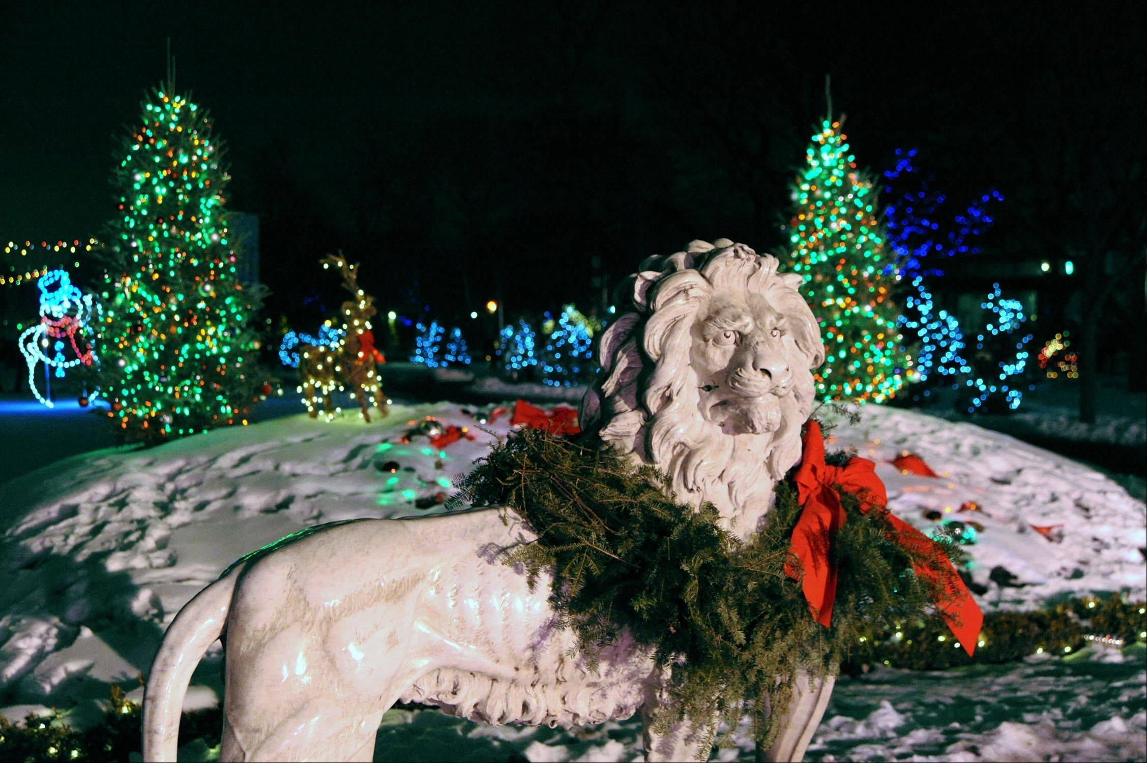 The Brookfield Zoo is lit up for the season on weekends and around Christmas for Holiday Magic.