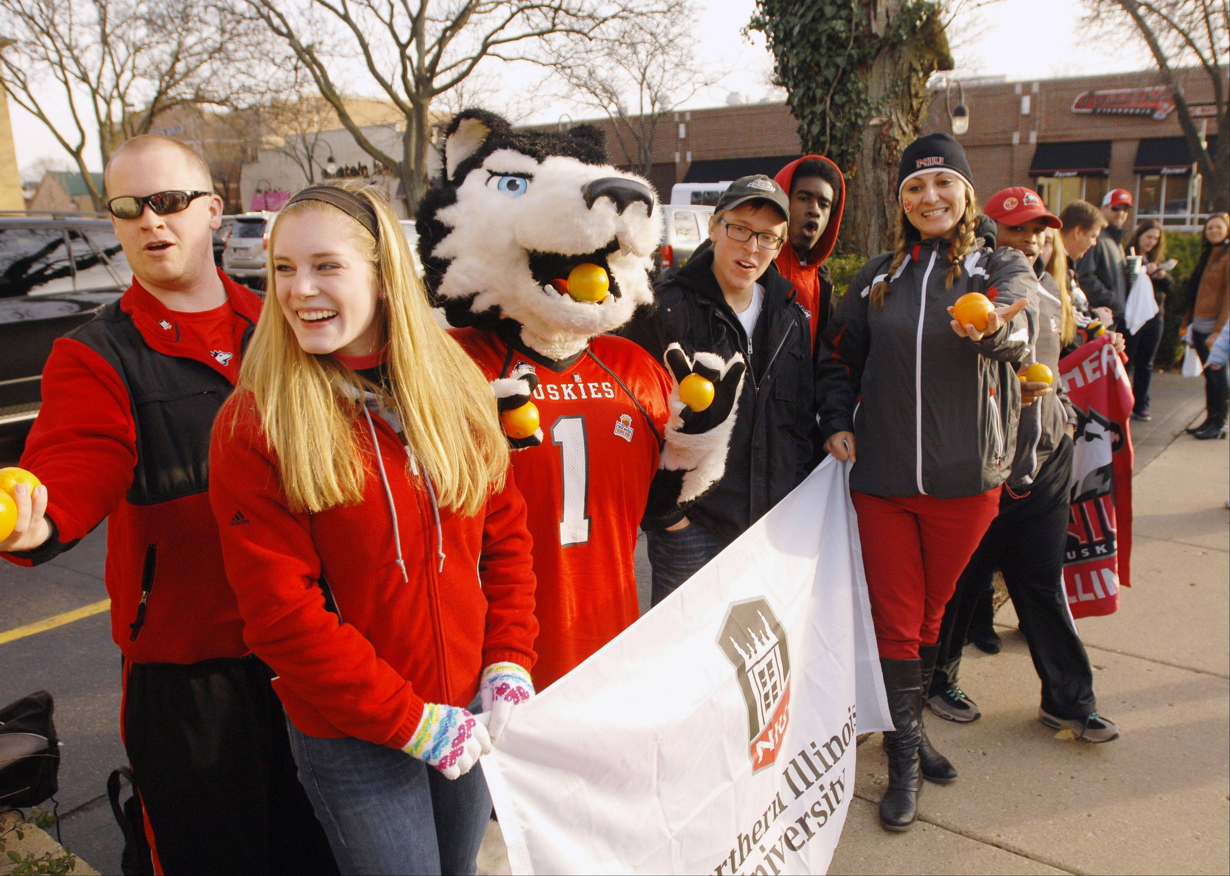 A group of Northern Illinois University students and mascot Victor E. Huskie traveled throughout the suburbs and city on Friday, including downtown Naperville, to promote the football team's Jan. 1 trip to the Orange Bowl. They handed out 2,000 oranges to fans over more than 12 hours.