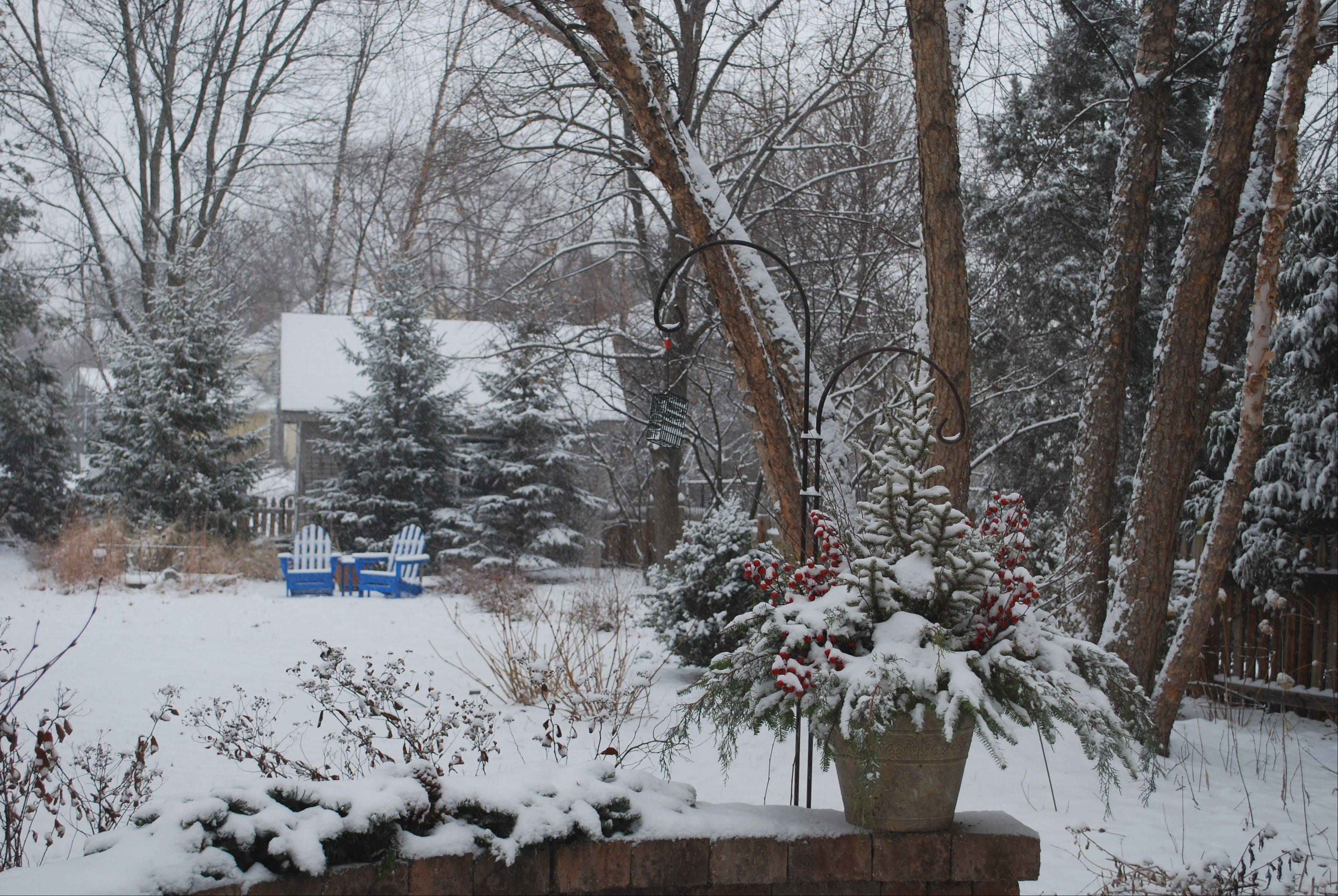 Christensen's winter backyard landscape is serene with a pop of color from the blue chairs in the back of the yard and the berries in the container near the house.