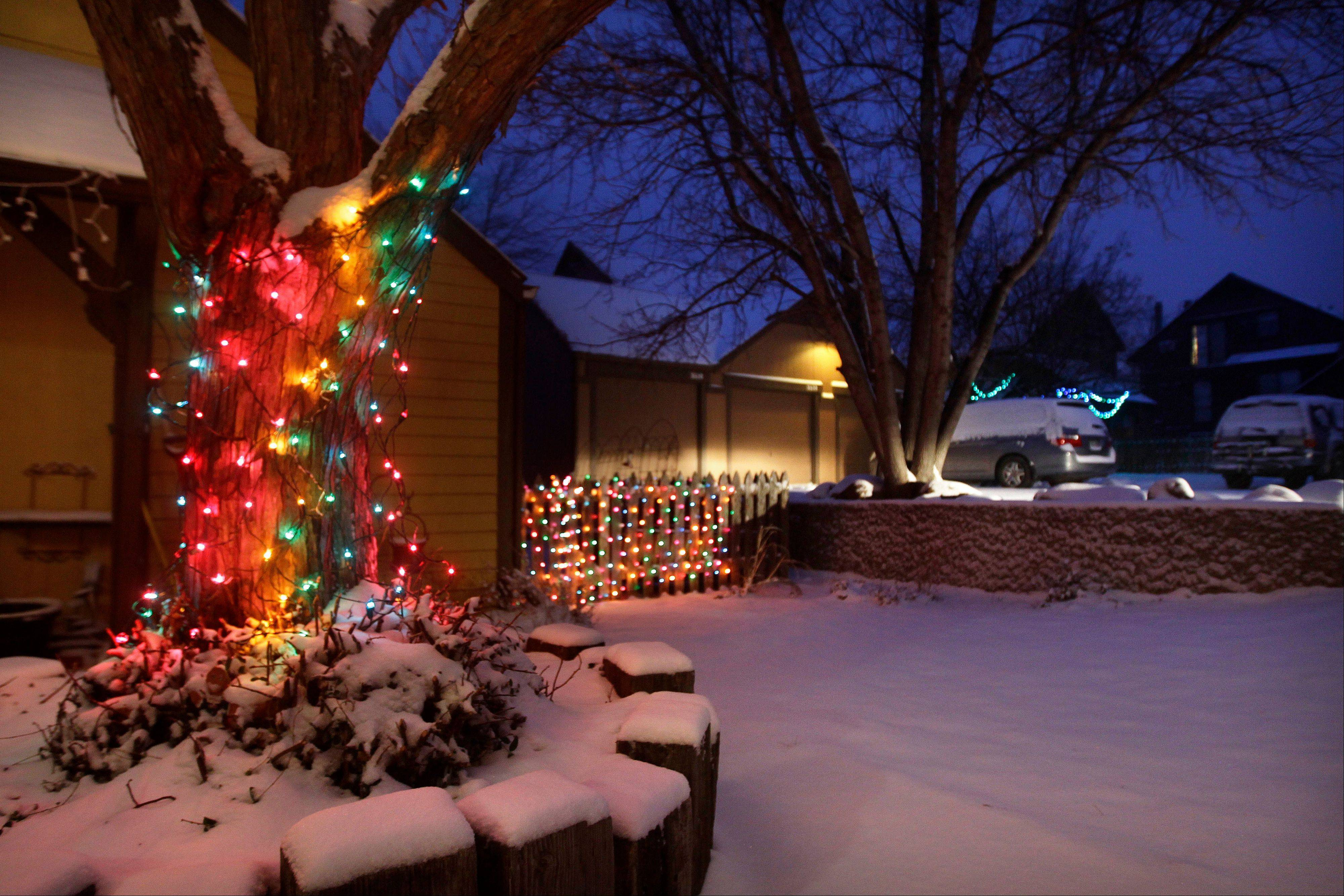 Christmas lights hang from a tree and a fence dusted with new snow, as the pre-dawn sky glows blue, in Boulder, Colo., Wednesday. A storm that has dumped more than a foot of snow in the Rocky Mountains is heading east and is forecast to bring the first major winter storm of the season to the central plains and Midwest.