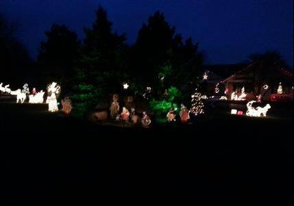 A Nativity scene is the centerpiece of a full acre of lights and decorations at 35 Carlisle Road in Hawthorn Woods. The display includes 50 decorated trees, says Joe Junia.