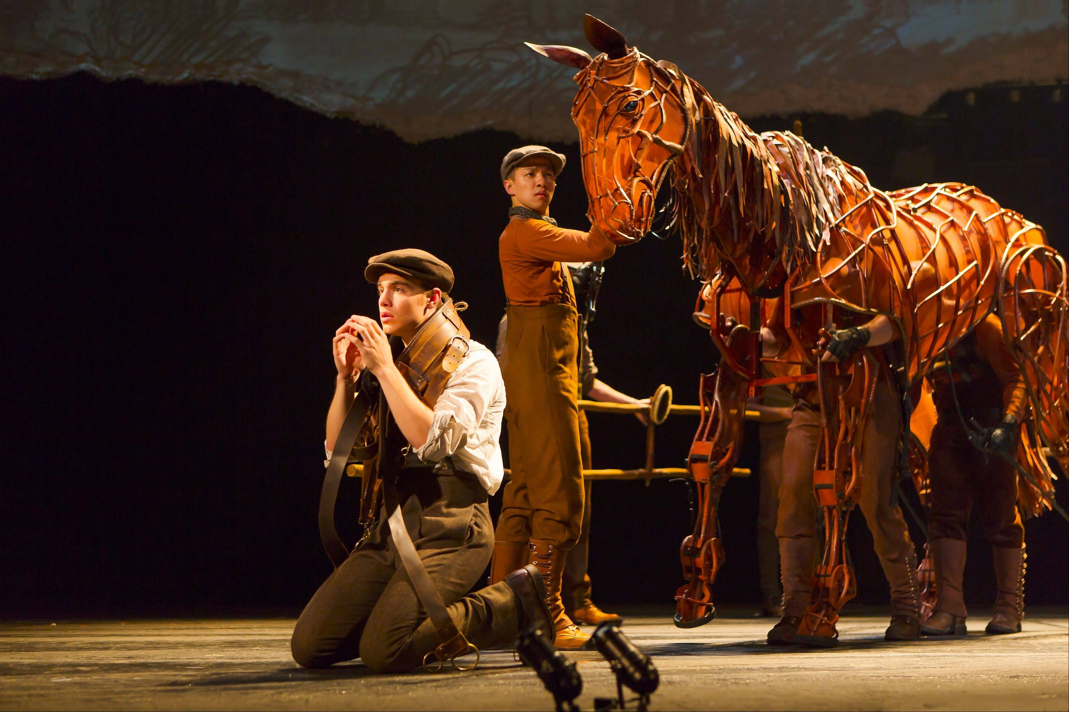 "Albert (Andrew Veenstra) must train the family's horse, Joey (manipulated by Christopher Mai, Derek Stratton and Rob Laqui), in the North American tour of ""War Horse,"" playing Chicago's Cadillac Palace Theatre now through Saturday, Jan. 5."
