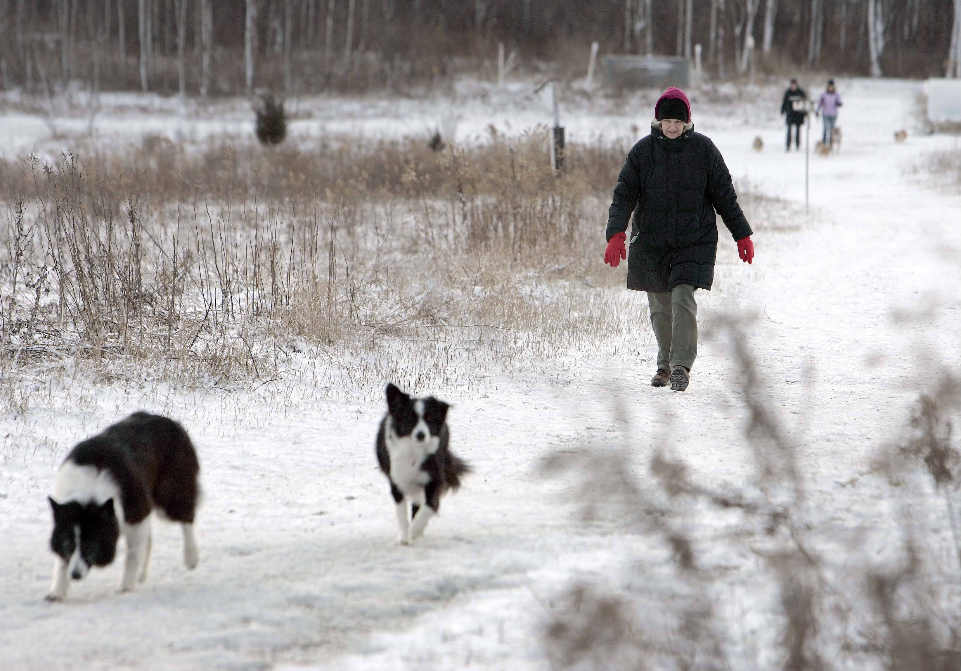 """I was hoping for a little more"" snow remarked Georgia Brown of St. Charles as she enjoyed a brisk walk with her dogs Billie and Seamus Friday at the Fox River Bluff Forest Preserve. ""When the weather is good we come up here"" says Brown who is hoping for more nice weather to make life easy for Christmas travelers. The first measurable snowfall for the Fox Valley resulted in little more than half an inch in most places."