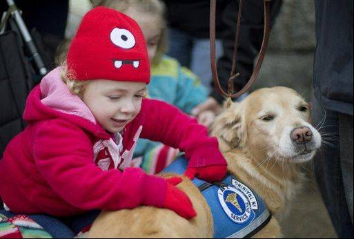 Addison Strychalsky, 2, of Newtown, Conn., pets Libby, a golden retriever therapy dog, during a visit from the dogs and their handlers to a memorial for the Sandy Hook Elementary School shooting victims in Newtown. Psychiatrists say after the grief and fear fades, most of Newtown's young survivors probably will cope without long-term emotional problems, often through play.
