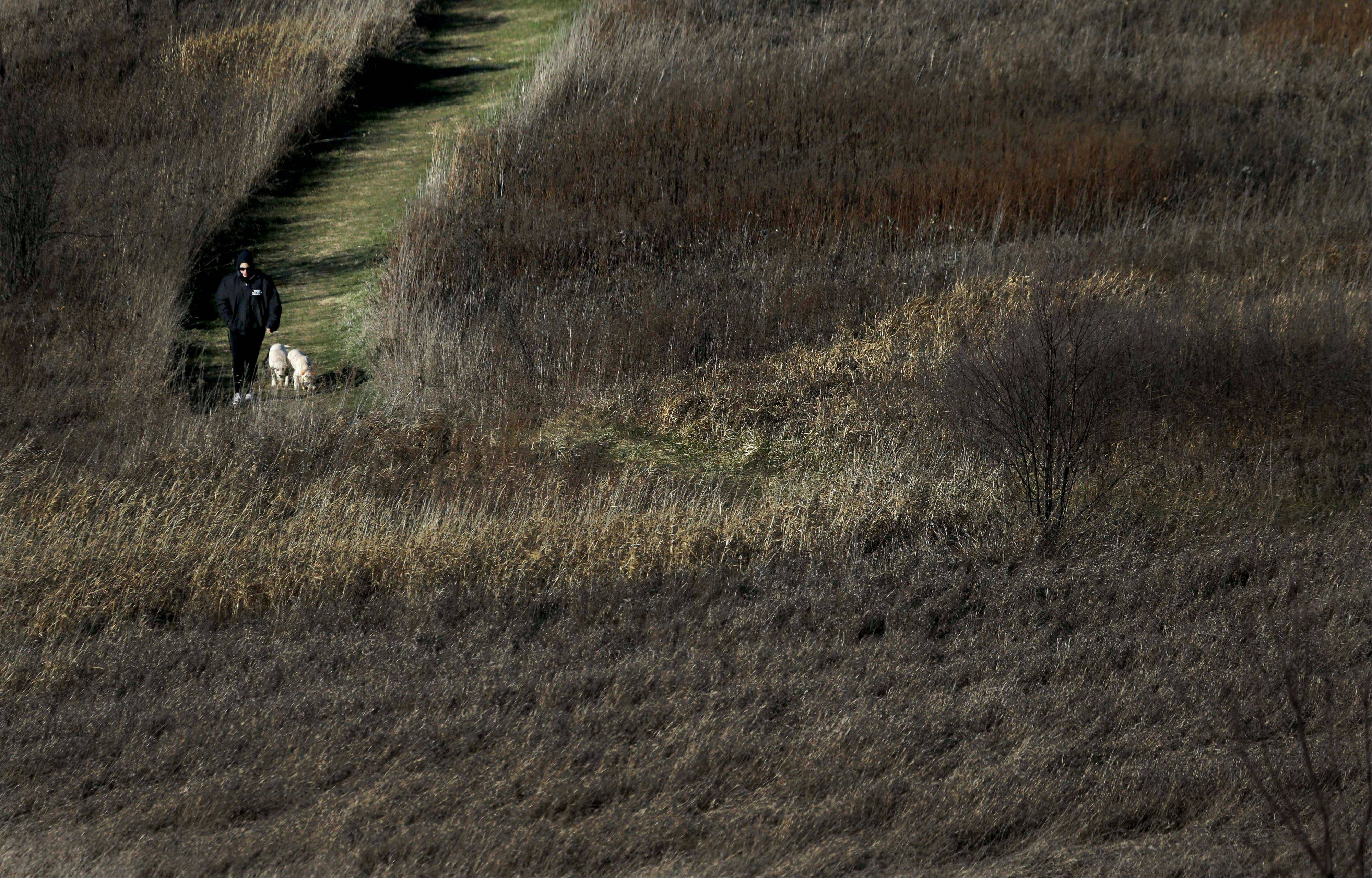 A lone hiker walks two dogs through the 3, 400-acre Glacial Park, a section of the of the 11,200 acre Hackmatack National Wildlife Refuge. Traffic jams, subdivisions and shopping malls give way to remnants of prairies and oak savannas more endangered than rain forests in the Hackmatack refuge, an hour northwest of Chicago and southwest of Milwaukee.