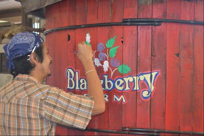 Blackberry Farm, the Fox Valley Park District's living history center, received $1.5 million in upgrades that were completed this fall, including an adventure playground. The farm will host a grand opening this spring.