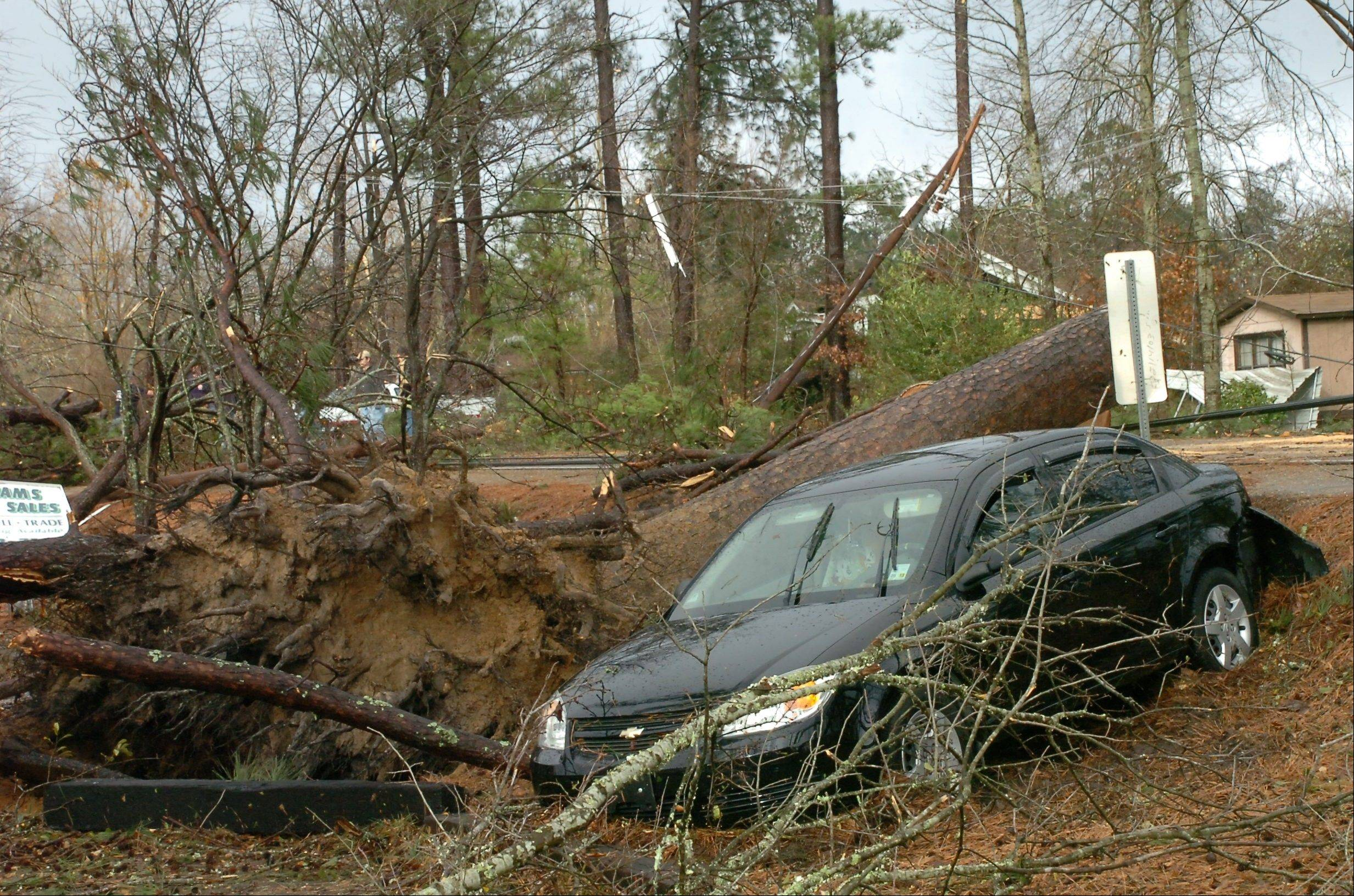 Geraldine Pedersen and her dog Marlow were in her car traveling down U.S. 71 in the Tioga, Louisiana area when a tree fell down in front of the car and a wind knocked her car into a yard, Tuesday, Dec. 25, 2012. A tornado through the Central Louisiana area.