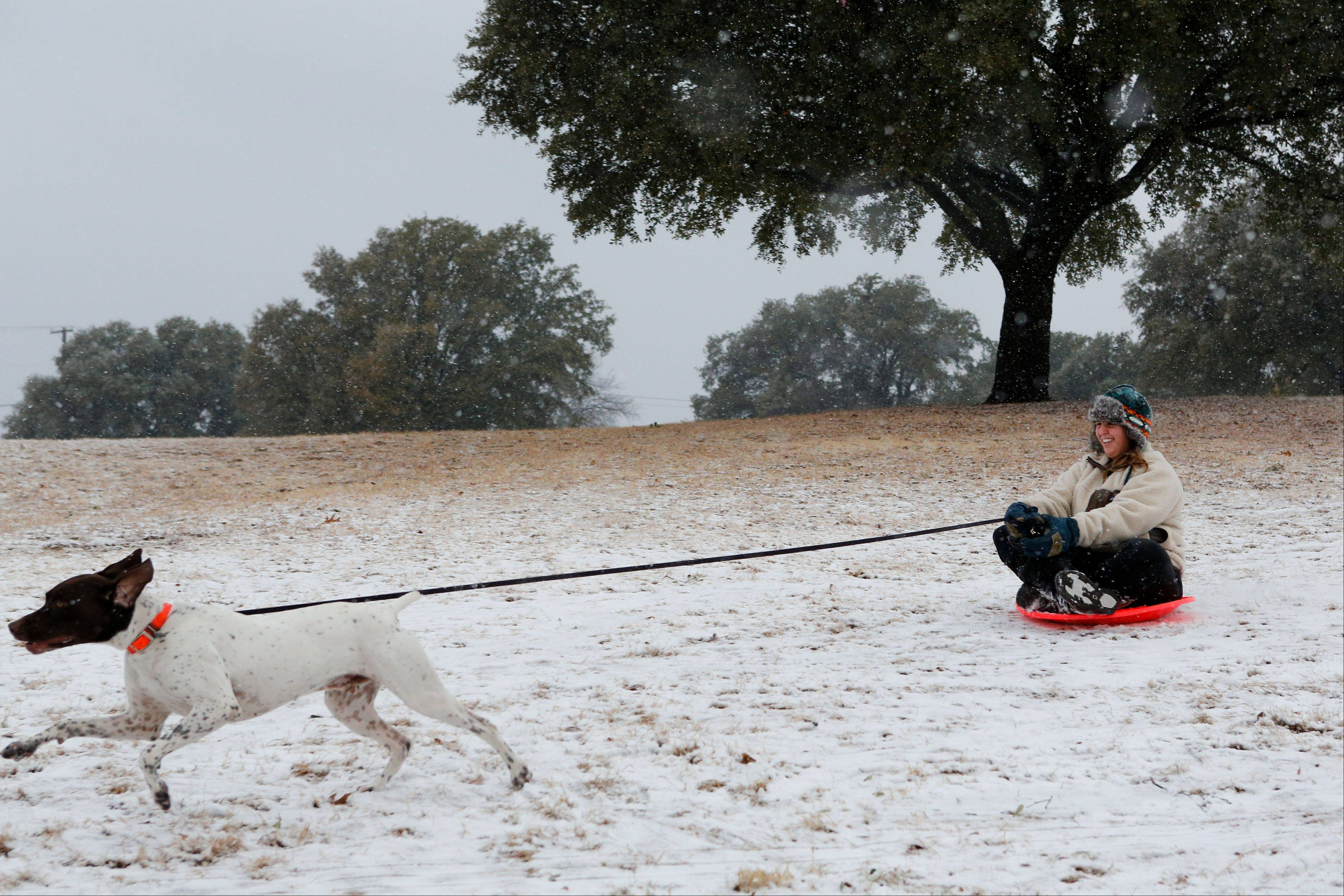 Lauren LaSalle is pulled down a hill on a sled by her dog Hank at Flagpole Hill Park in Dallas, on Tuesday, Dec. 25, 2012.