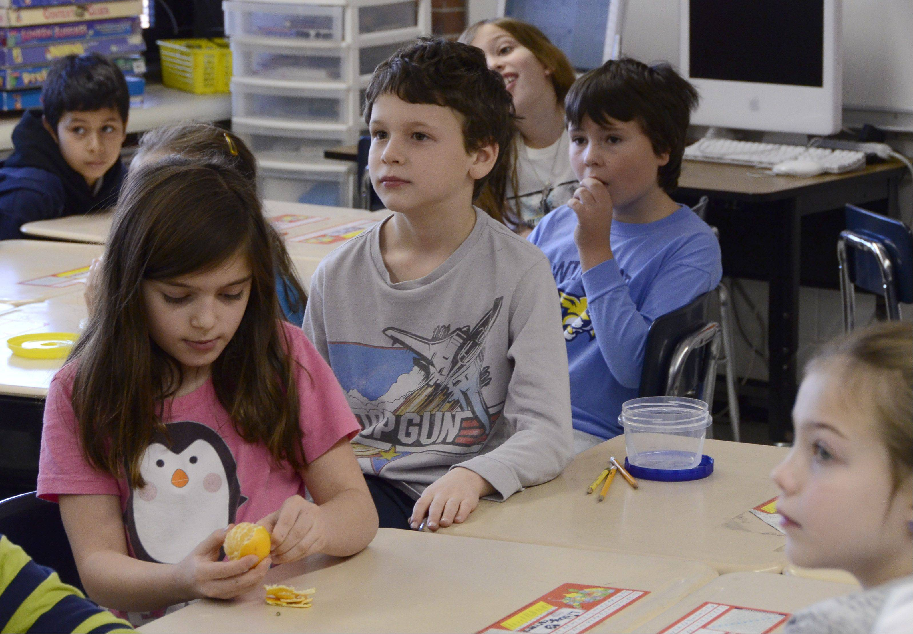 Students at Windsor Elementary School in Arlington Heights are allowed to eat healthy snacks during midmorning classes.