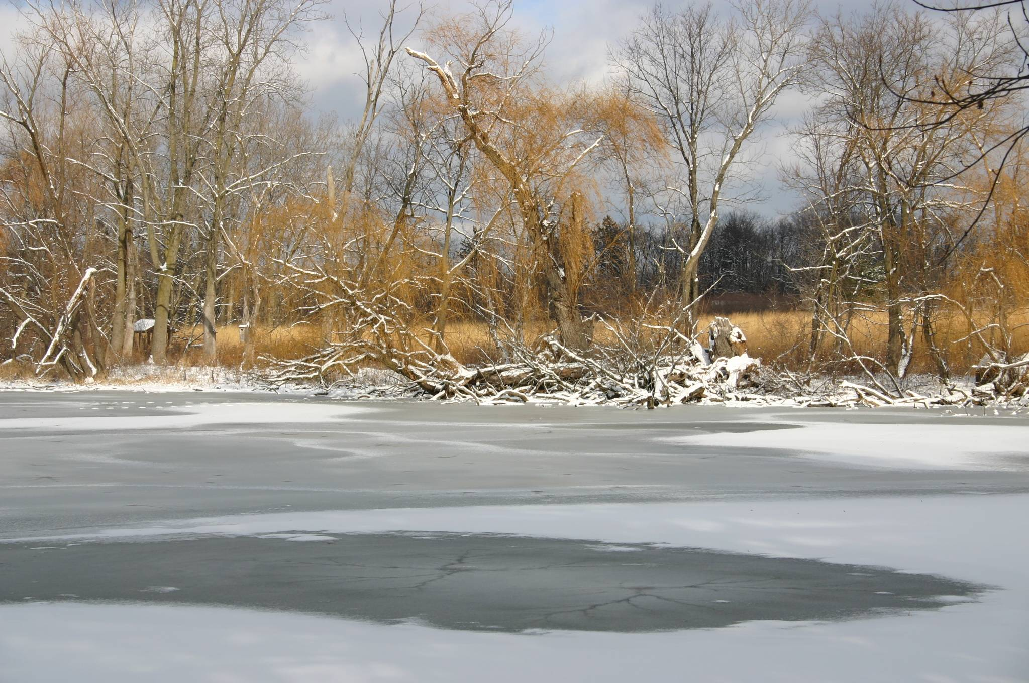 A lake at Spring Valley last winter.