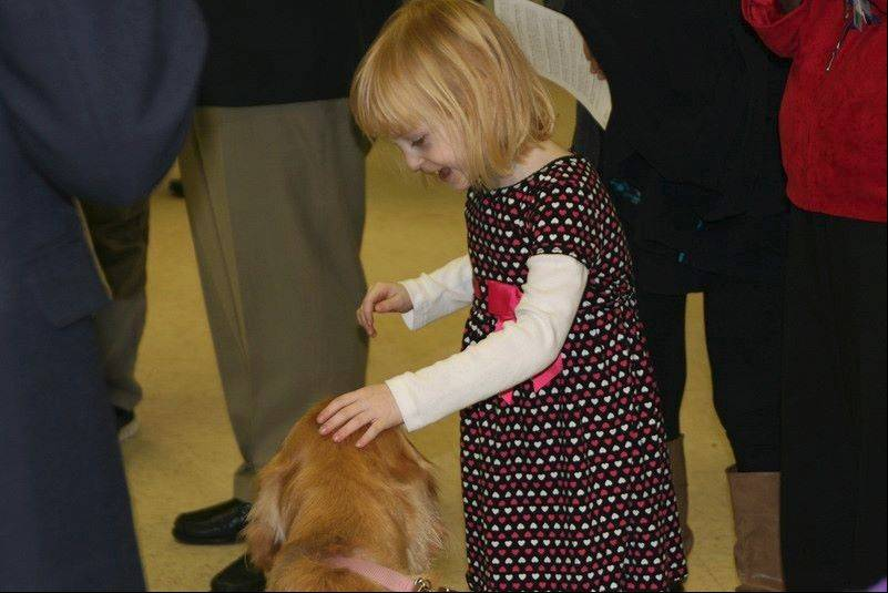 A delighted child pets the head of a golden retriever.