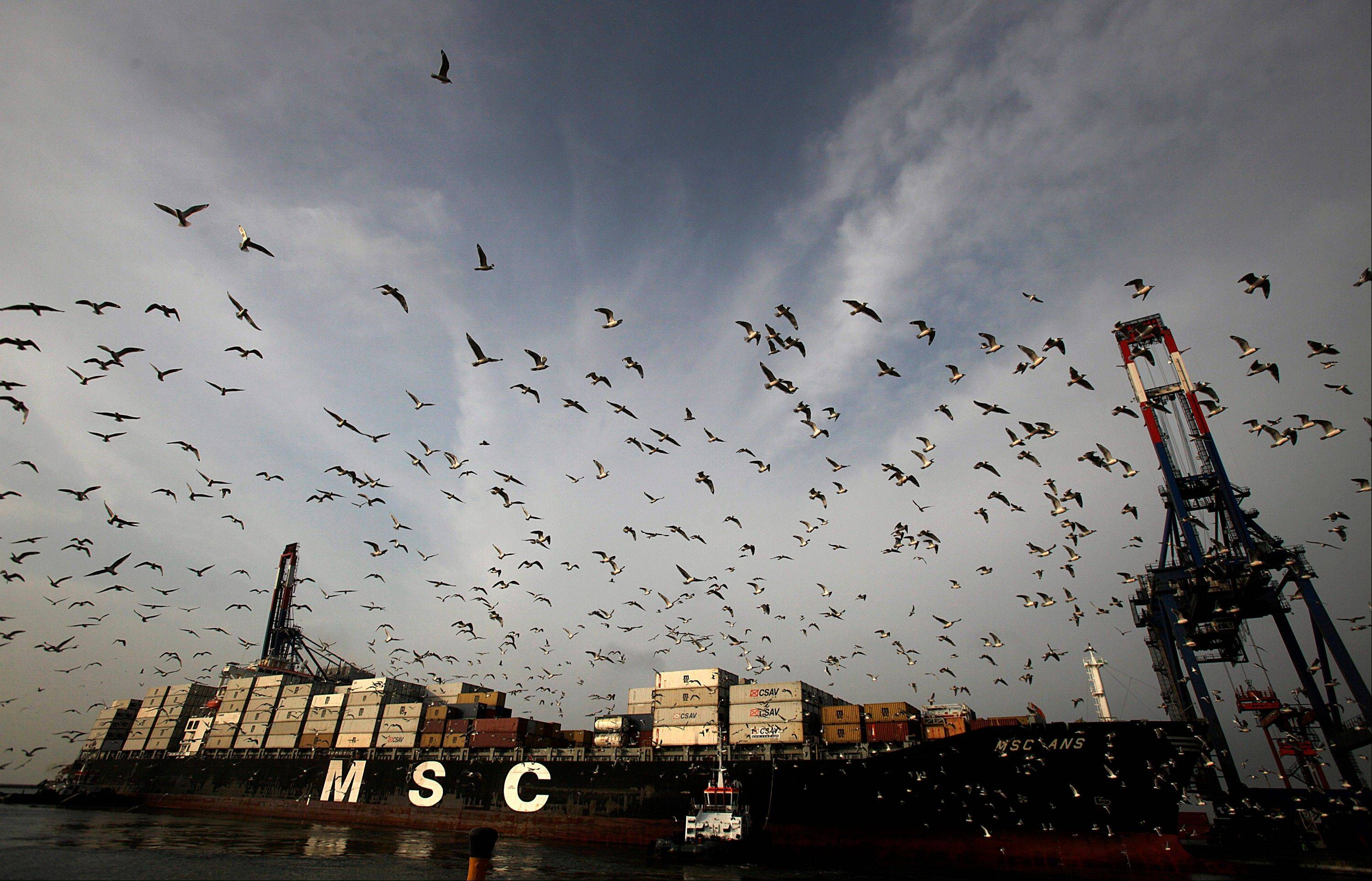 Birds fly above a freighter as it is towed to the docks at the APM Terminals BV area of the Port of Callao in Lima, Peru, on Thursday, March 15, 2012. Economic activity in Peru expanded 5.4 percent from a year earlier, compared with 6 percent growth in December, the government's statistics agency said.