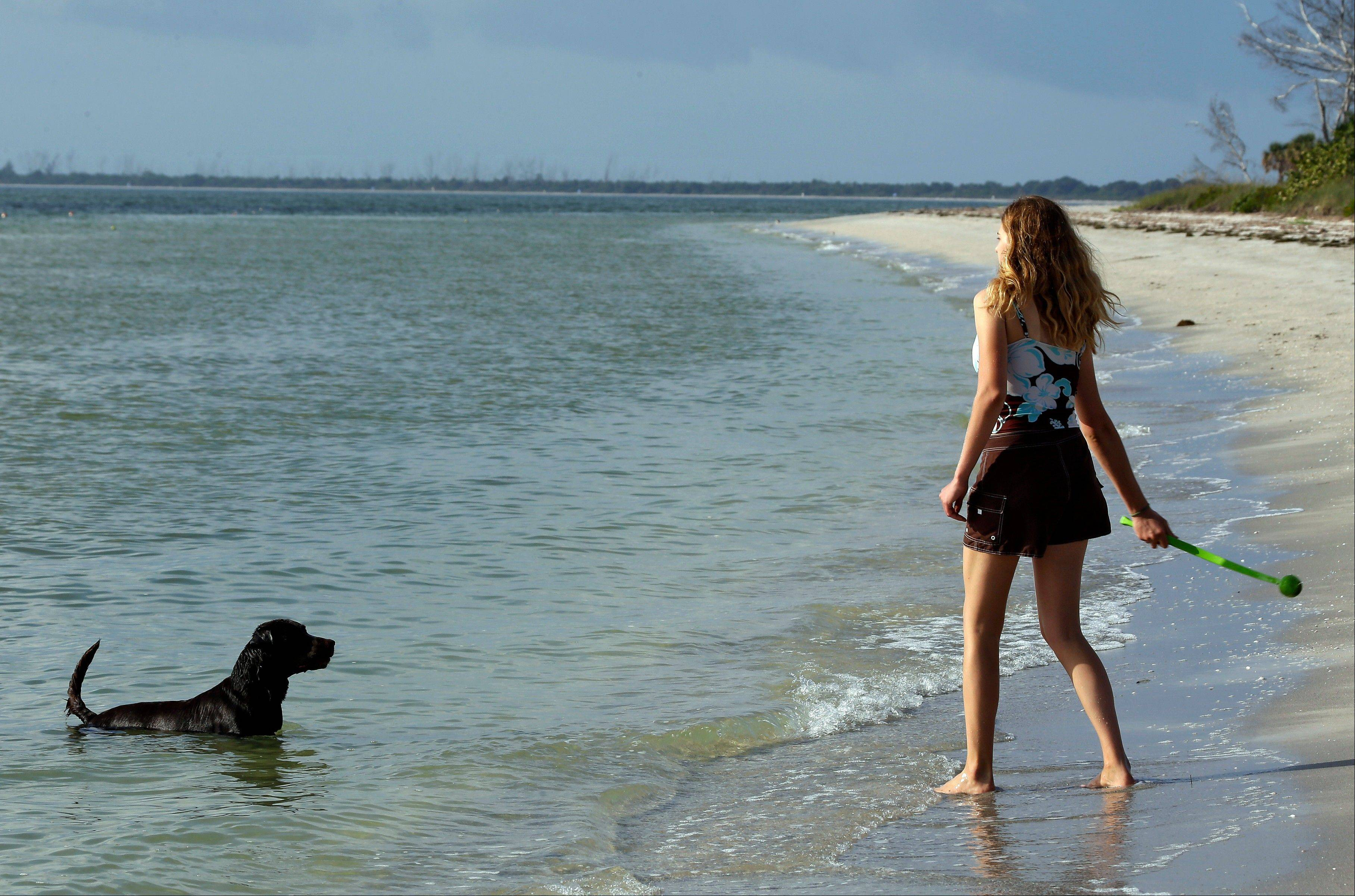 Sarah Ranes, of Safety Harbor, prepares to throw a tennis ball to her dog Strider on a dog friendly beach at Fort DeSoto Park in St. Petersburg, Fla.
