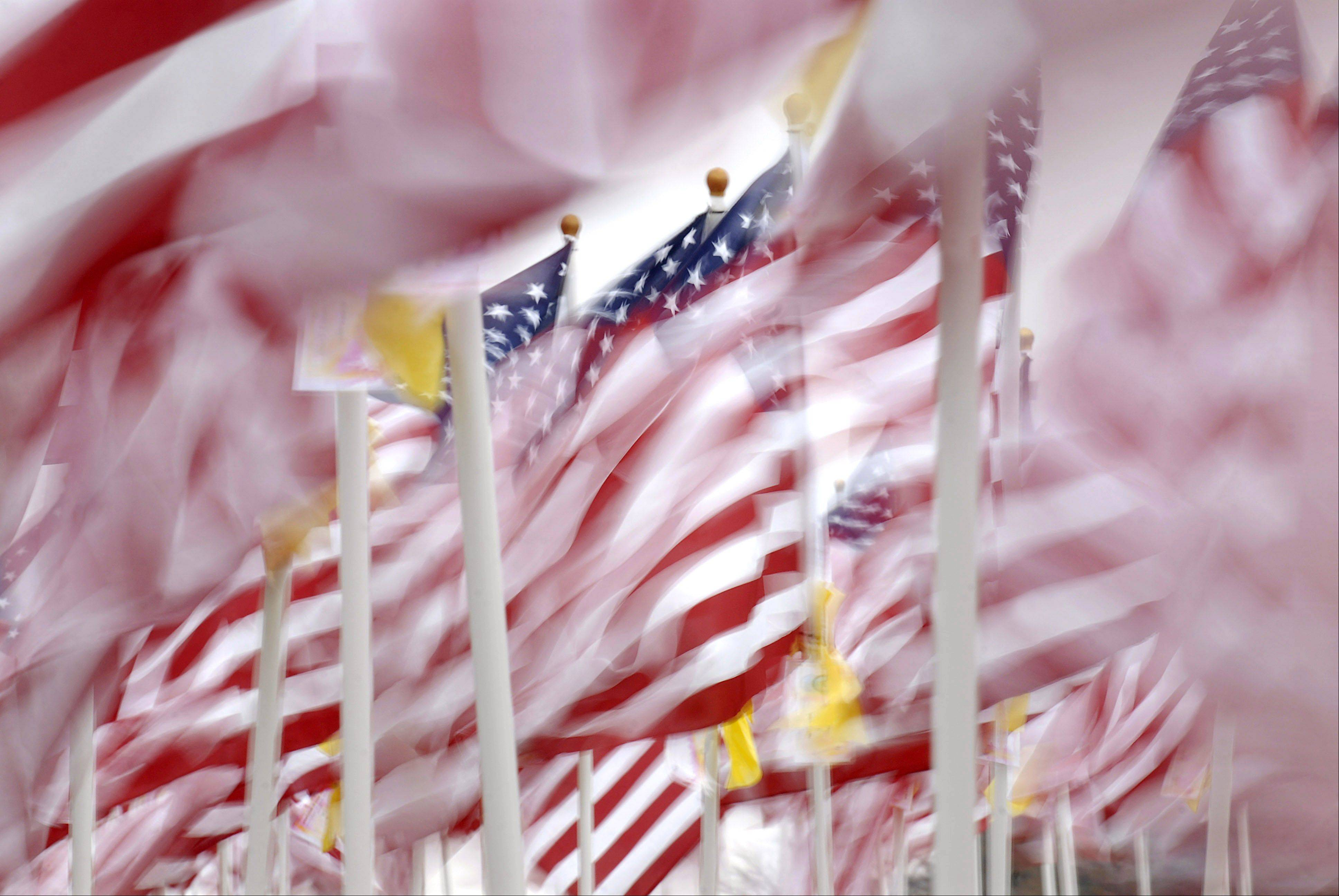 Over three hundred American flags representing fallen soldiers since 9/11 whip in the wind while on display along Route 47 near Oak Creek Highway in Huntley for Veterans Day.