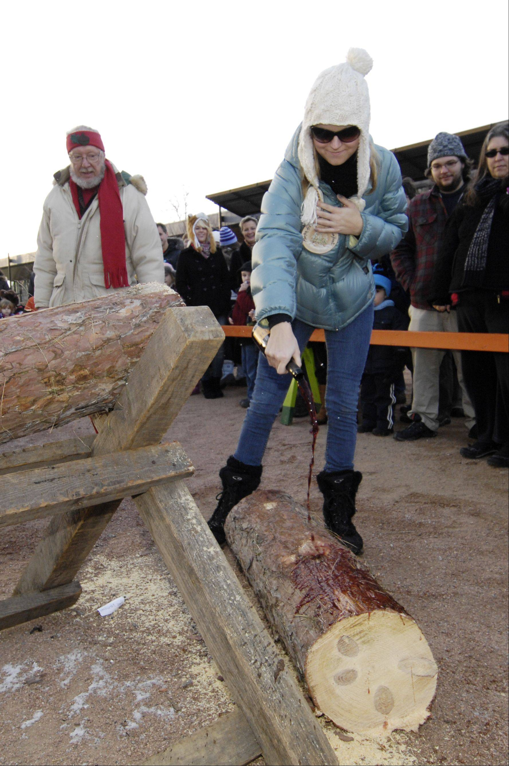 Nikki Knoepfle of Naperville pours the ceremonial wine over half of the Yule Log during The Morton Arboretum 35th annual Hunt for the Yule Log Sunday. Knoepfle and her parents, John and Cristina, found the log by following clues to its location on the arboretum grounds.