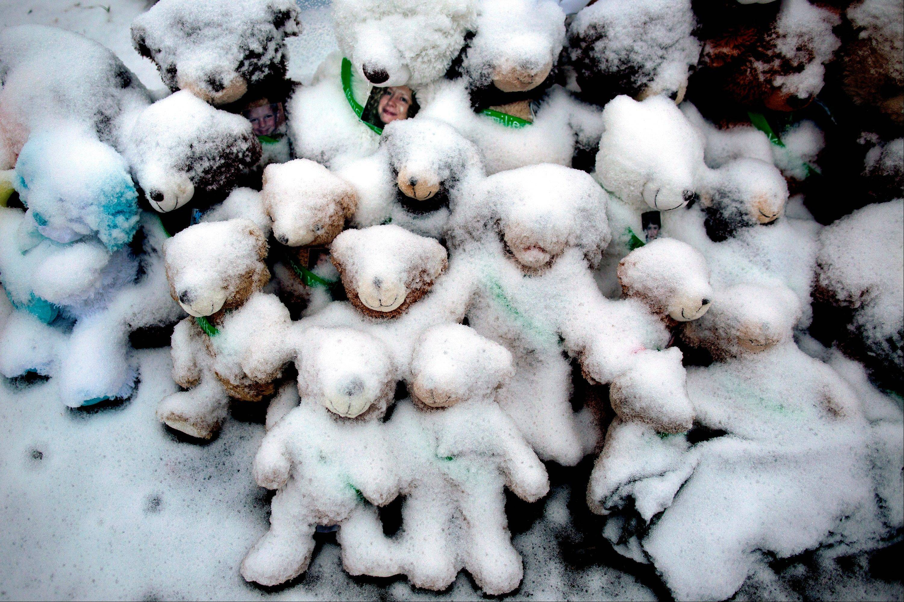 Snow-covered stuffed animals with photos attached sit at a memorial in Newtown, Conn. Police escorted parents and other family members of children and educators killed at Newtown's Sandy Hook Elementary School on Friday to the massive memorial of candles, handwritten cards, stuffed animals and more before the items were removed.