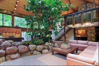 "A 30-foot-tall rubber tree growing under a skylight is one of the ways nature comes indoors in the Riverwoods home of Joyce Marcus, recently named ""House of the Year"" by readers of The Wall Street Journal."