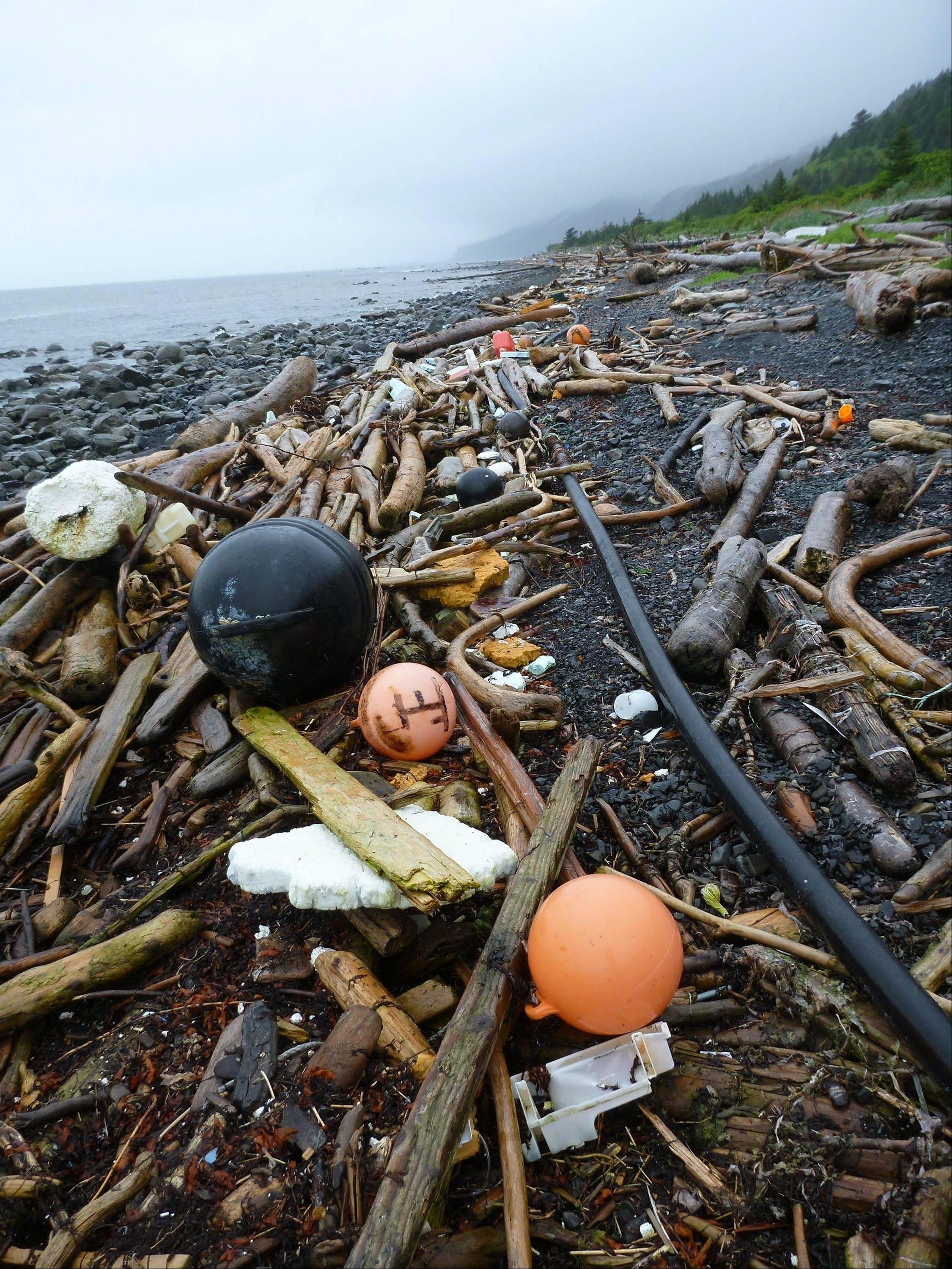 Associated PressBuoys, foam and other debris are strewn about a beach on Kayak Island, Alaska. The West Coast is anticipating more debris from the 2011 Japanese tsunami to wash ashore this winter. Scientists expect the bulk of the tsunami debris to end up in the Pacific Northwest.