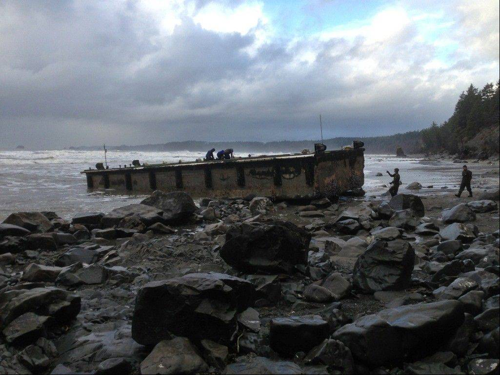 Scientists inspect a dock that floated up on a remote stretch of wilderness beach in northwestern Washington. A scientist who examined the dock says it looks just like the one that came ashore on a central Oregon beach last summer, suggesting it also is a piece of tsunami debris from Japan.