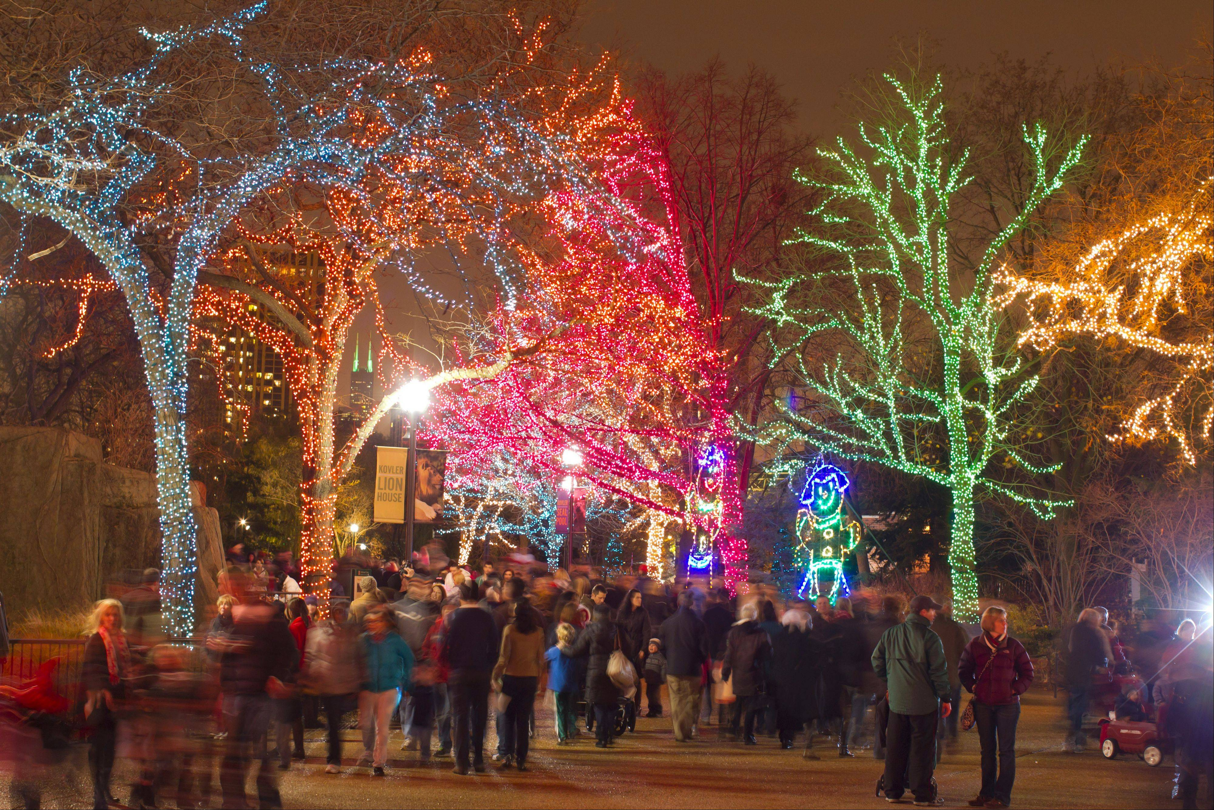 "See more than 2 million colorful lights at the annual ""ZooLights"" celebration at Lincoln Park Zoo."
