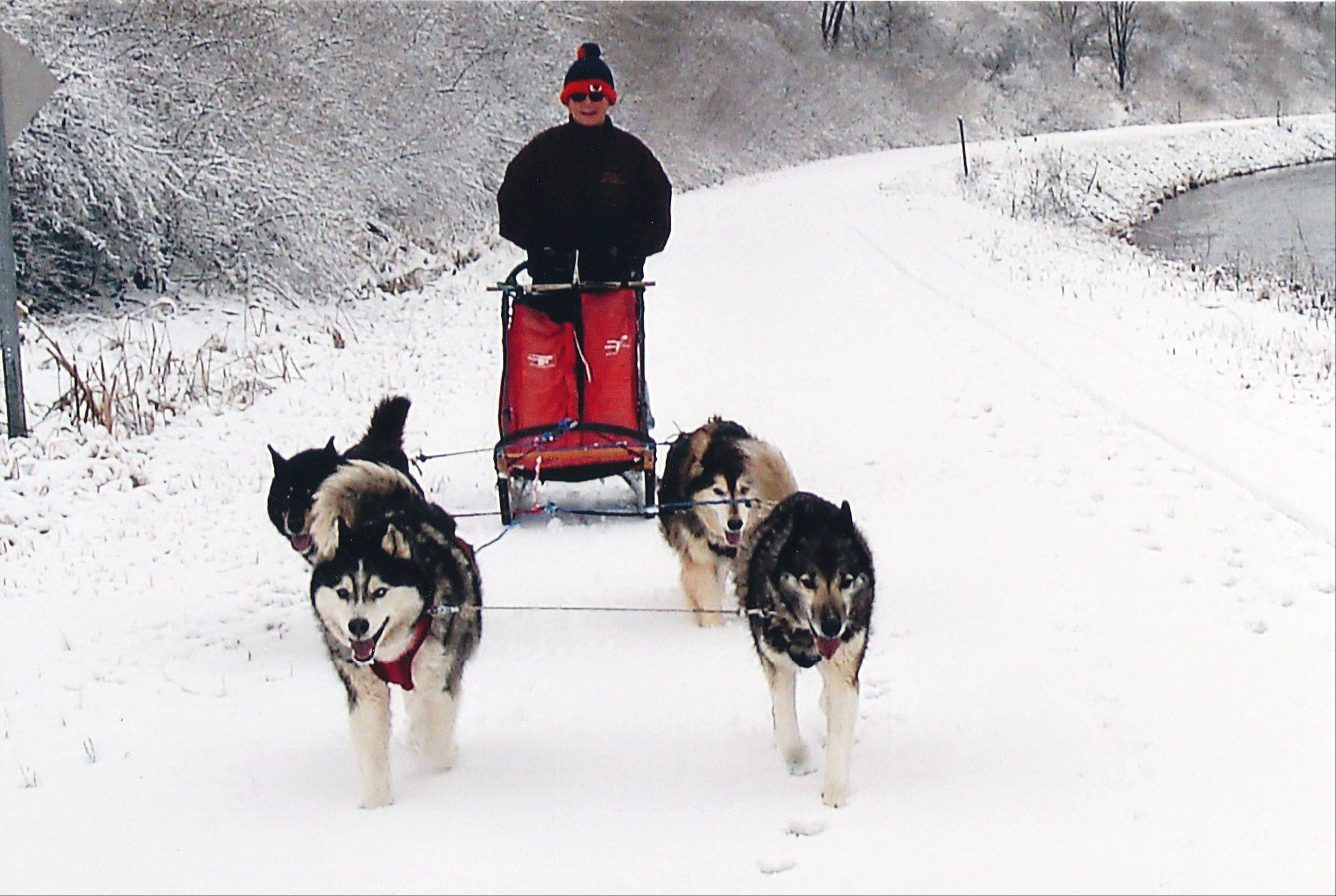 Try outdoor recreation, such as dog sledding, at Hennepin Canal Parkway State Park in Henry, Ill.