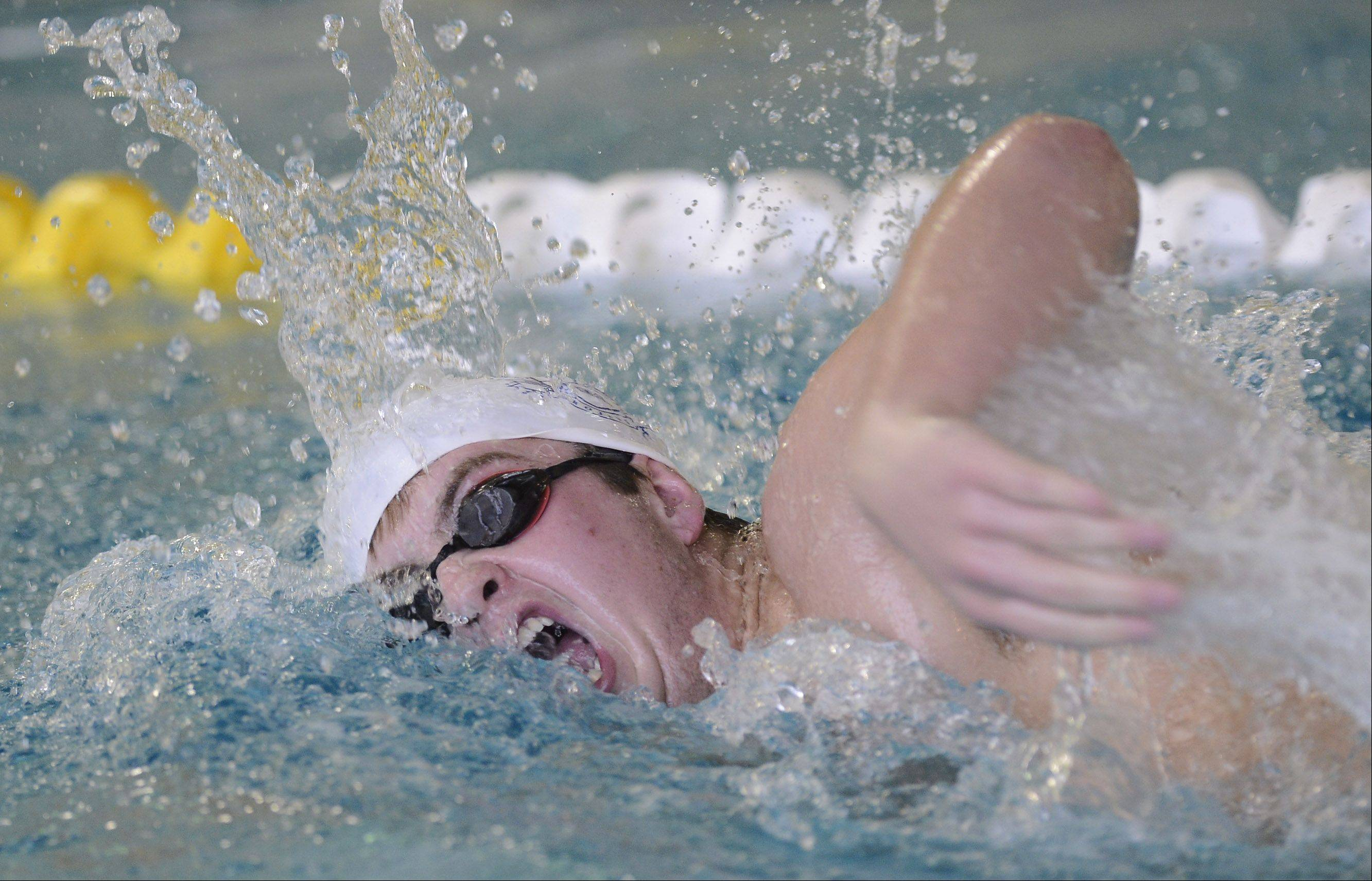 Cary-Grove's Max Hopkins swims the 200-yard freestyle during the Grenadier Swim Invitational at Elk Grove High School Saturday.