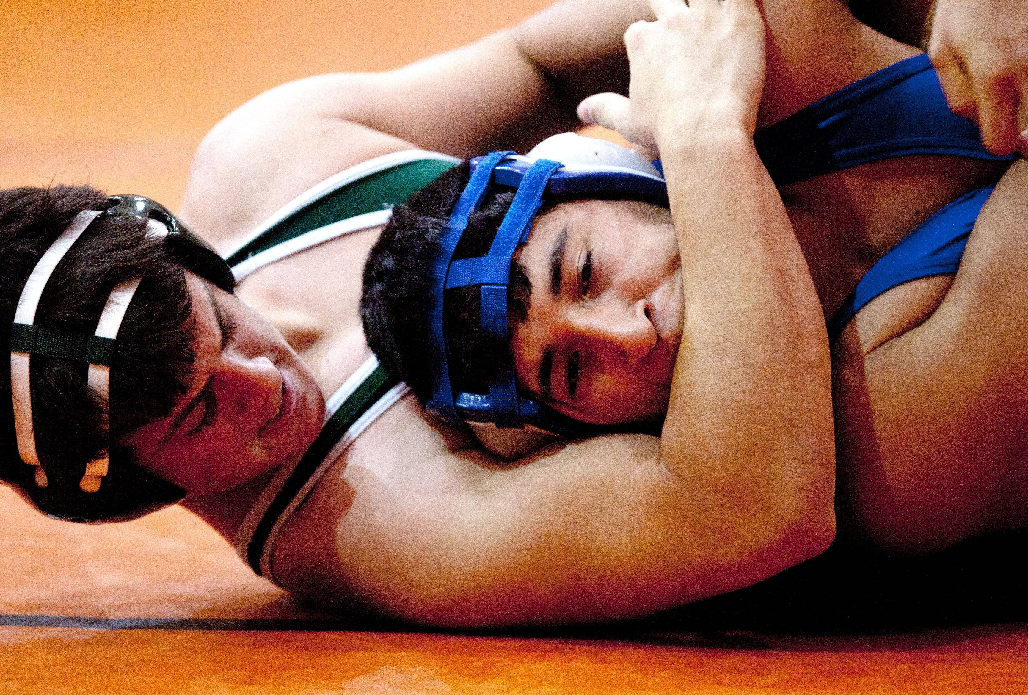 Glenbard West's Jordan Hassan, left, wins by technical fall over Fenton's Juan Alfaro, right, at the 182 weight, during the Wheaton Warrenville South Wrestling quad.