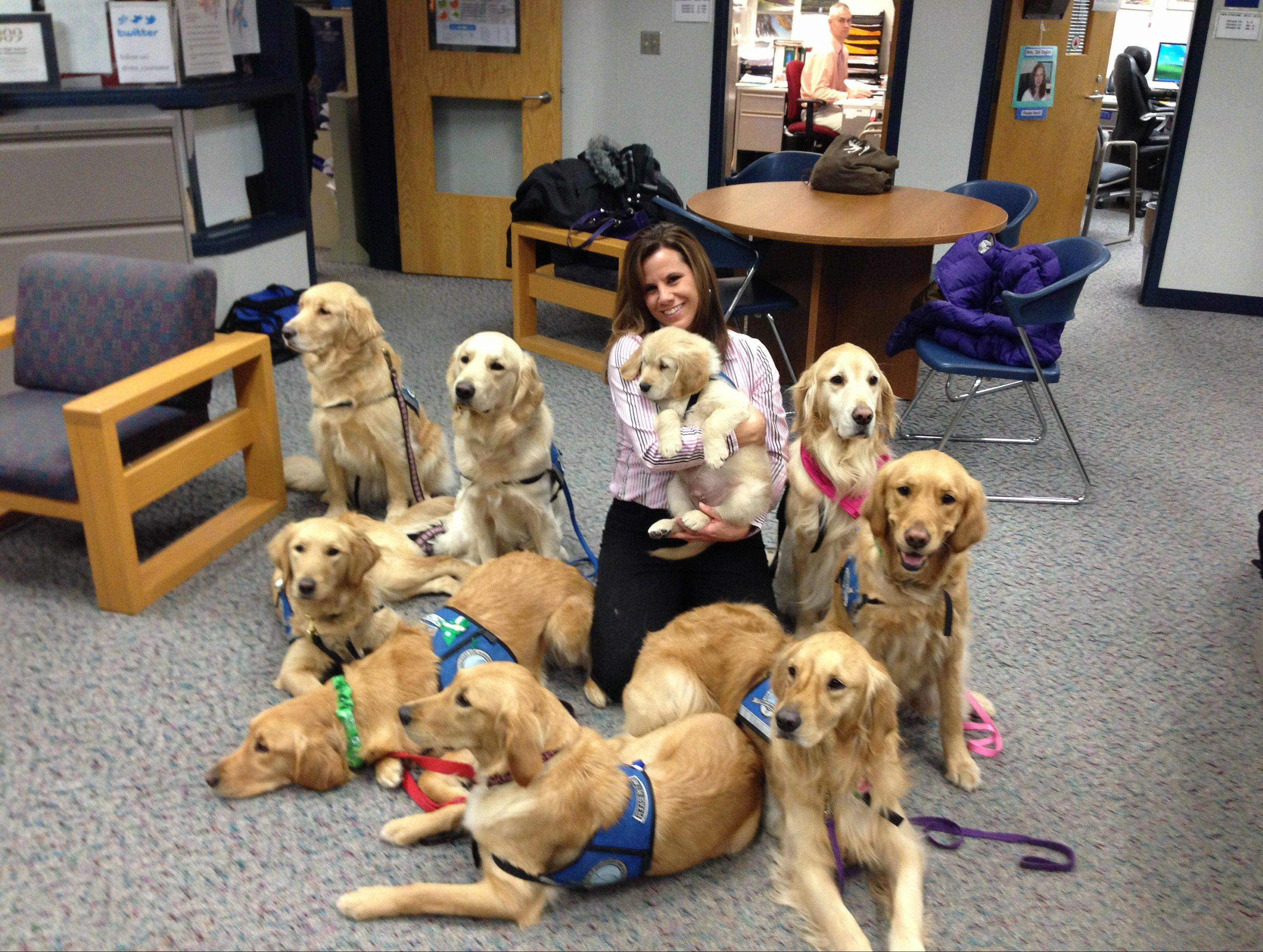 Local dogs a comfort to Sandy Hook students
