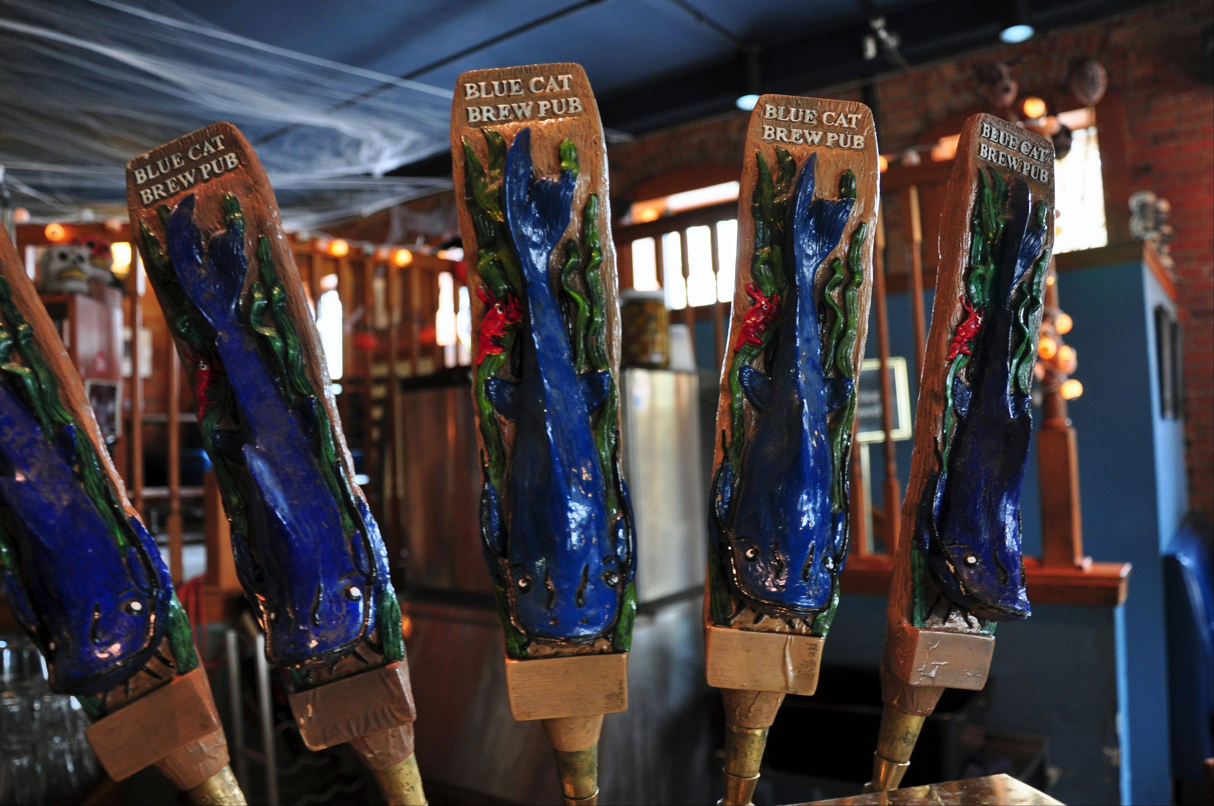 Handles on the tap at Blue Cat Brew Pub in Rock Island are decorated with the figure of a blue catfish, the pub's namesake.