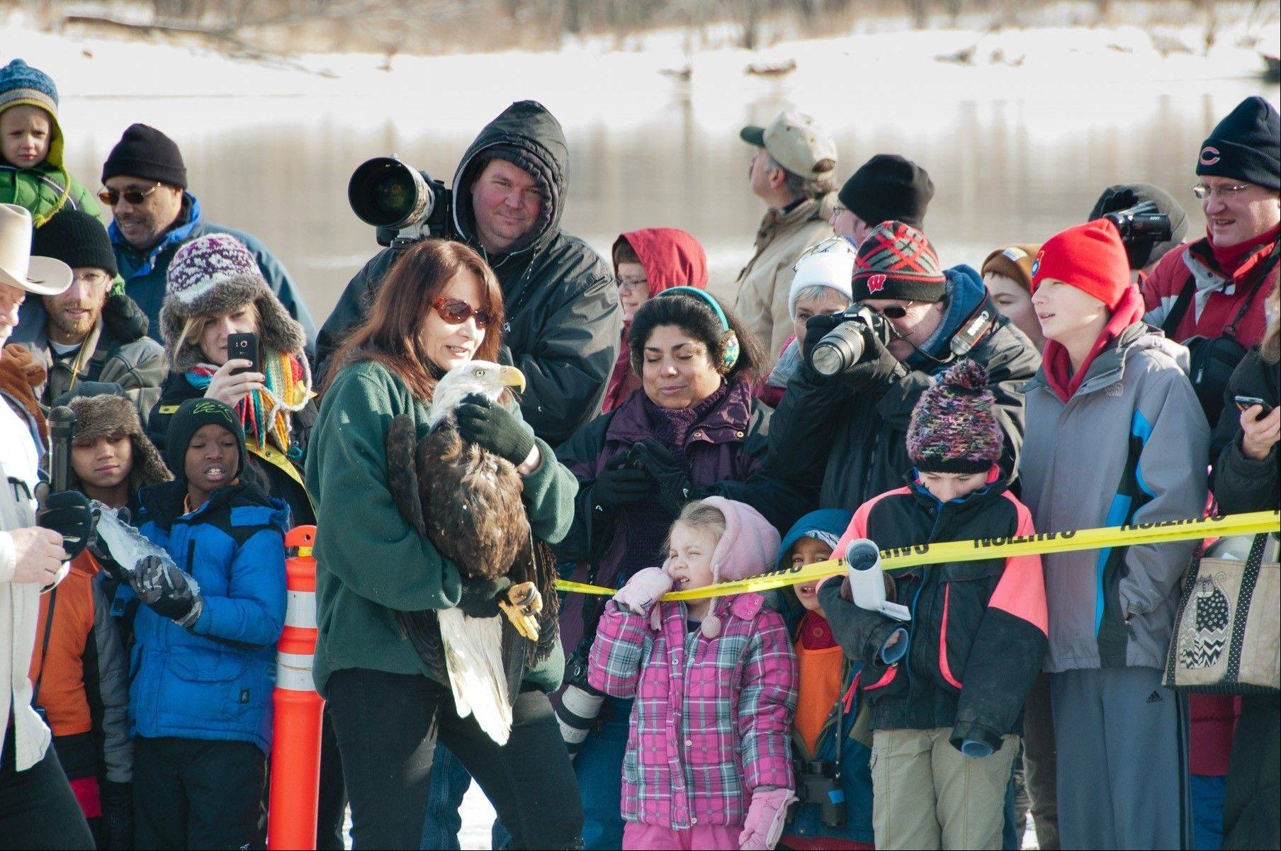 Marge Gibson from the Raptor Education Group releases a rehabilitated eagle on the banks of the Wisconsin River during the annual Eagle Days event in Prairie du Sac, Wis.