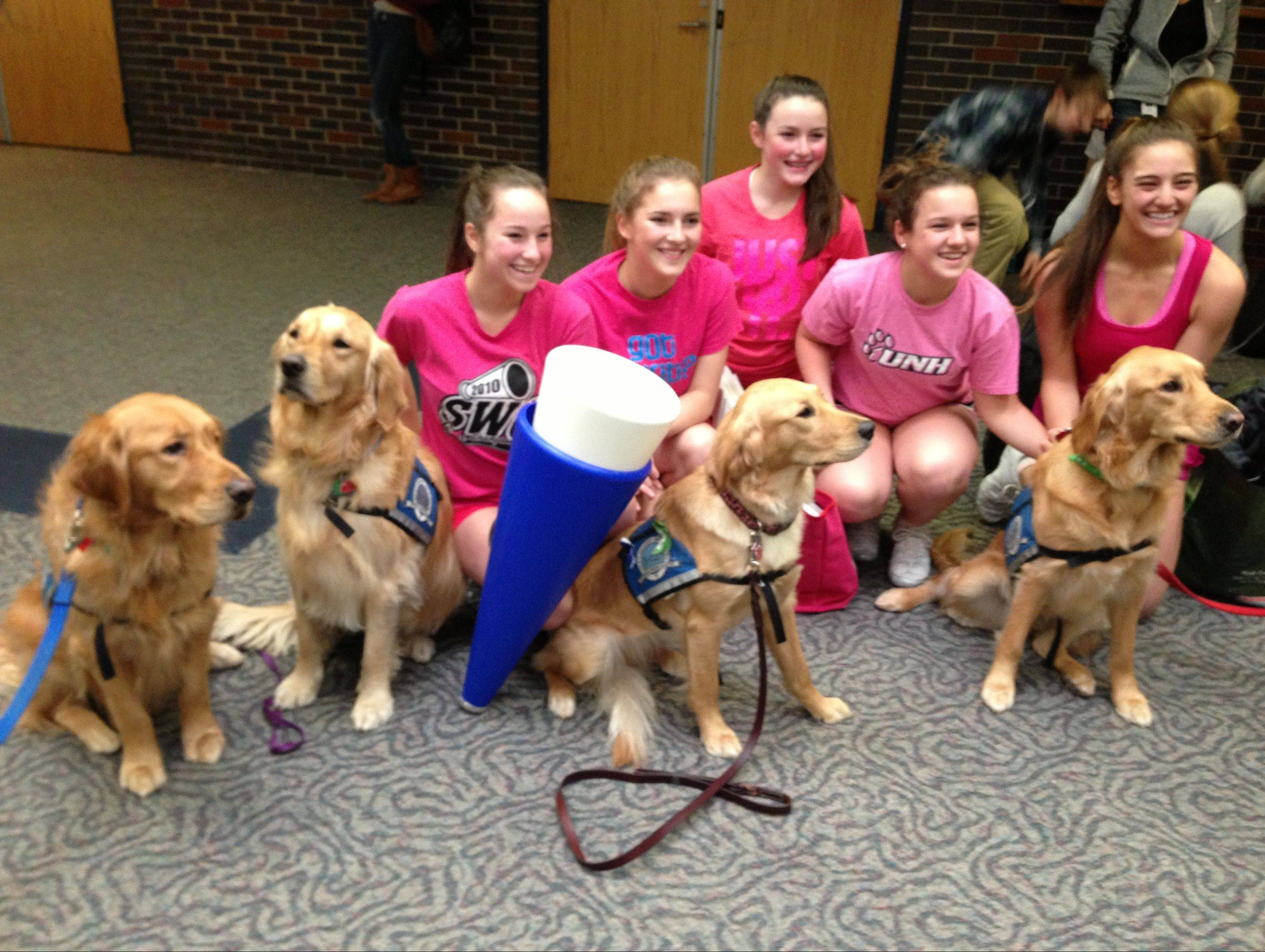 Newtown High School cheerleaders pose with comfort dogs at the school this month. They were dispatched by Addison-based Lutheran Church Charities.