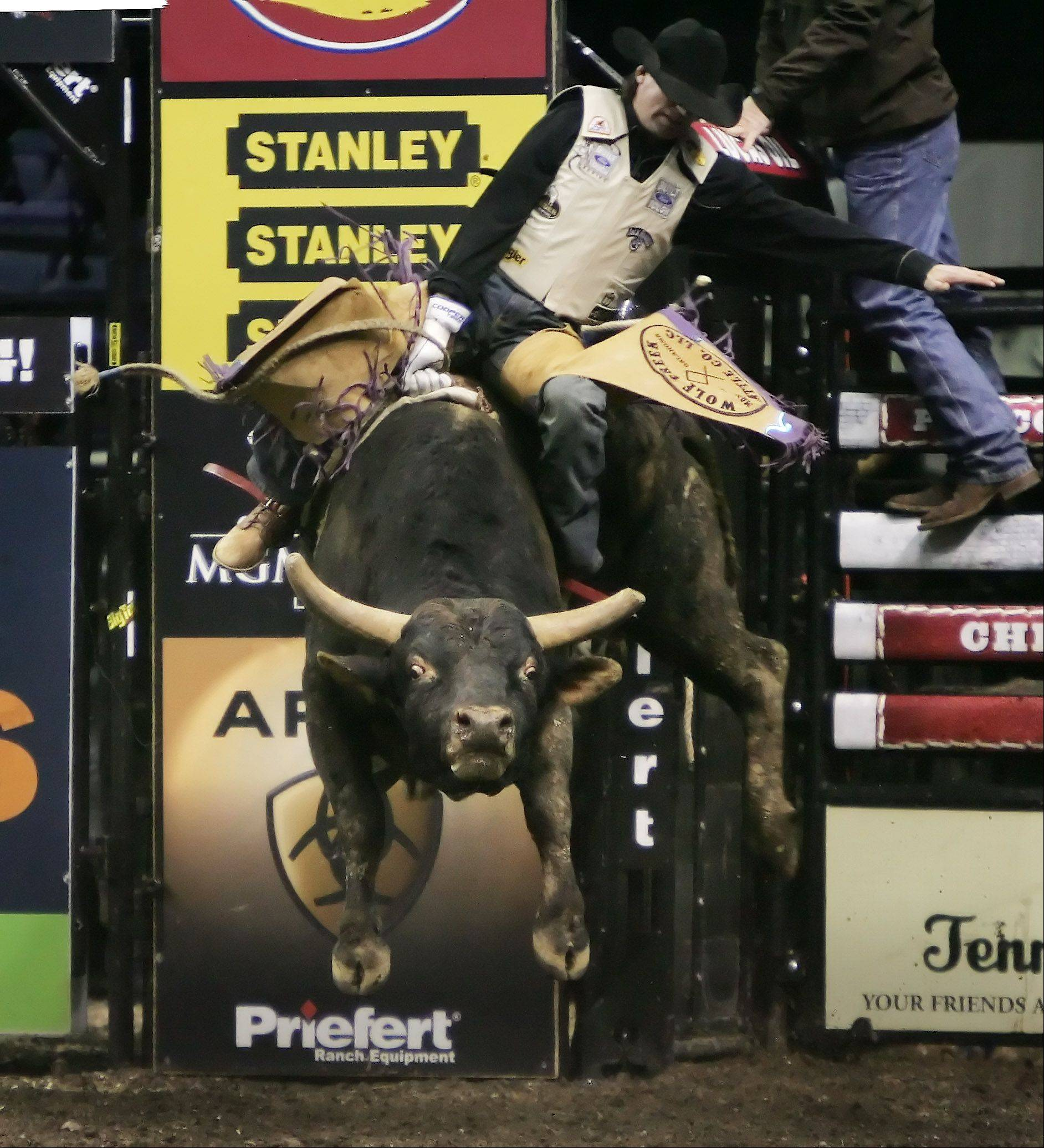 Ben Jones rides Bar Code during The Professional Bull Riders Chicago Invitational Sunday at the Allstate Arena in Rosemont. Riders from around the world competed in the arena riding 2,000 pound bulls.