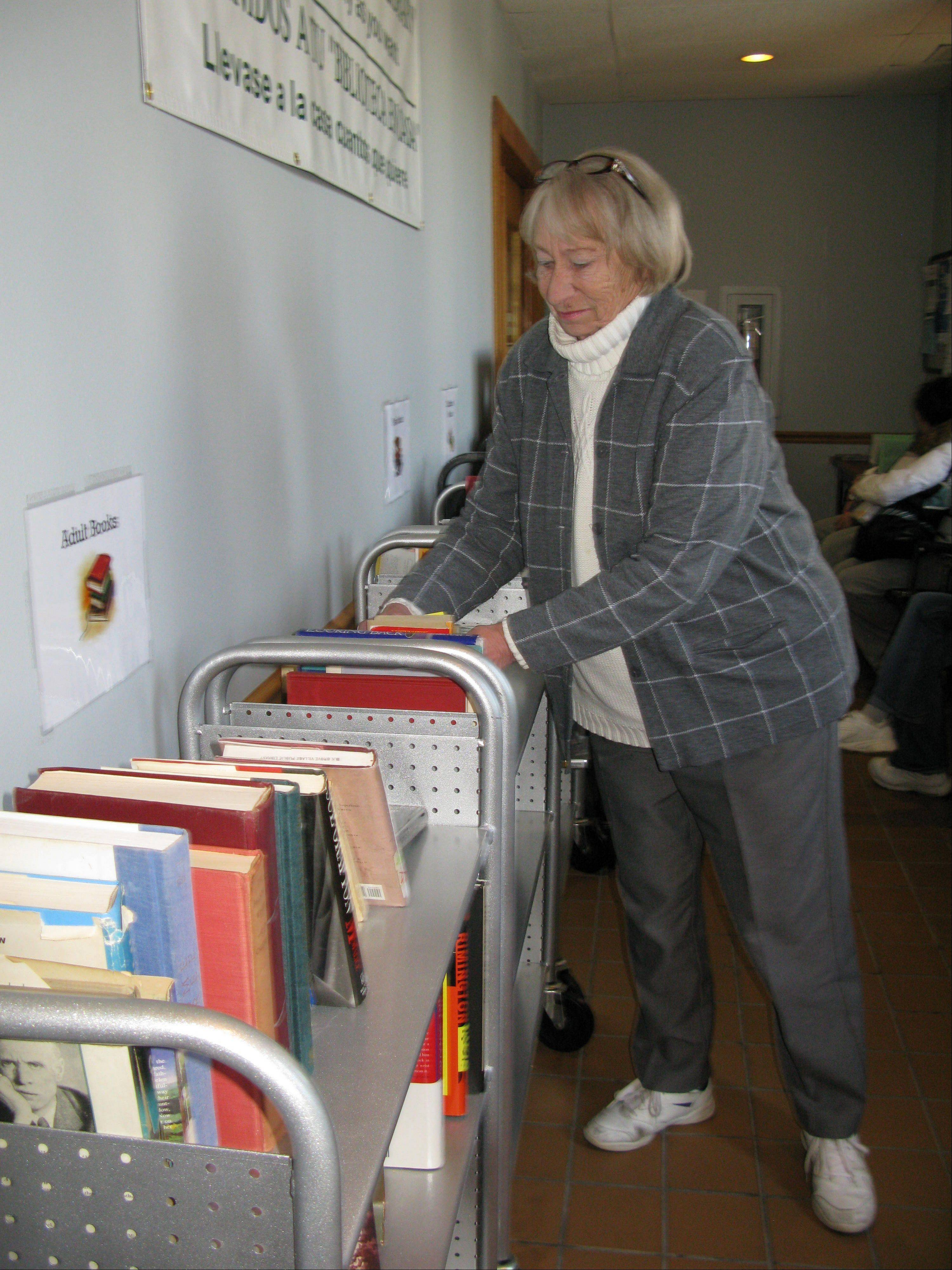 Elk Grove Township Supervisor Nanci Vanderweel is retiring this April after nearly 28 years with the township. Vanderweel started a free library which earned the township a Governor's Home Town Award in 2008.