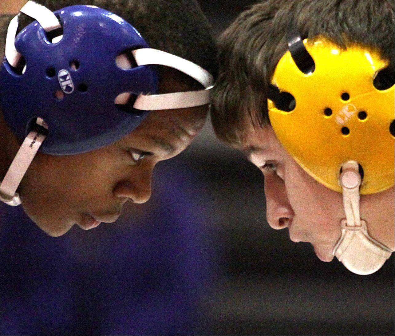 Jacobs' Jake Orth, right, faces off with Dundee-Crown's Taborist Robinson, left, during their 132-pound match at Carpentersville on Thursday night. Orth won the match.