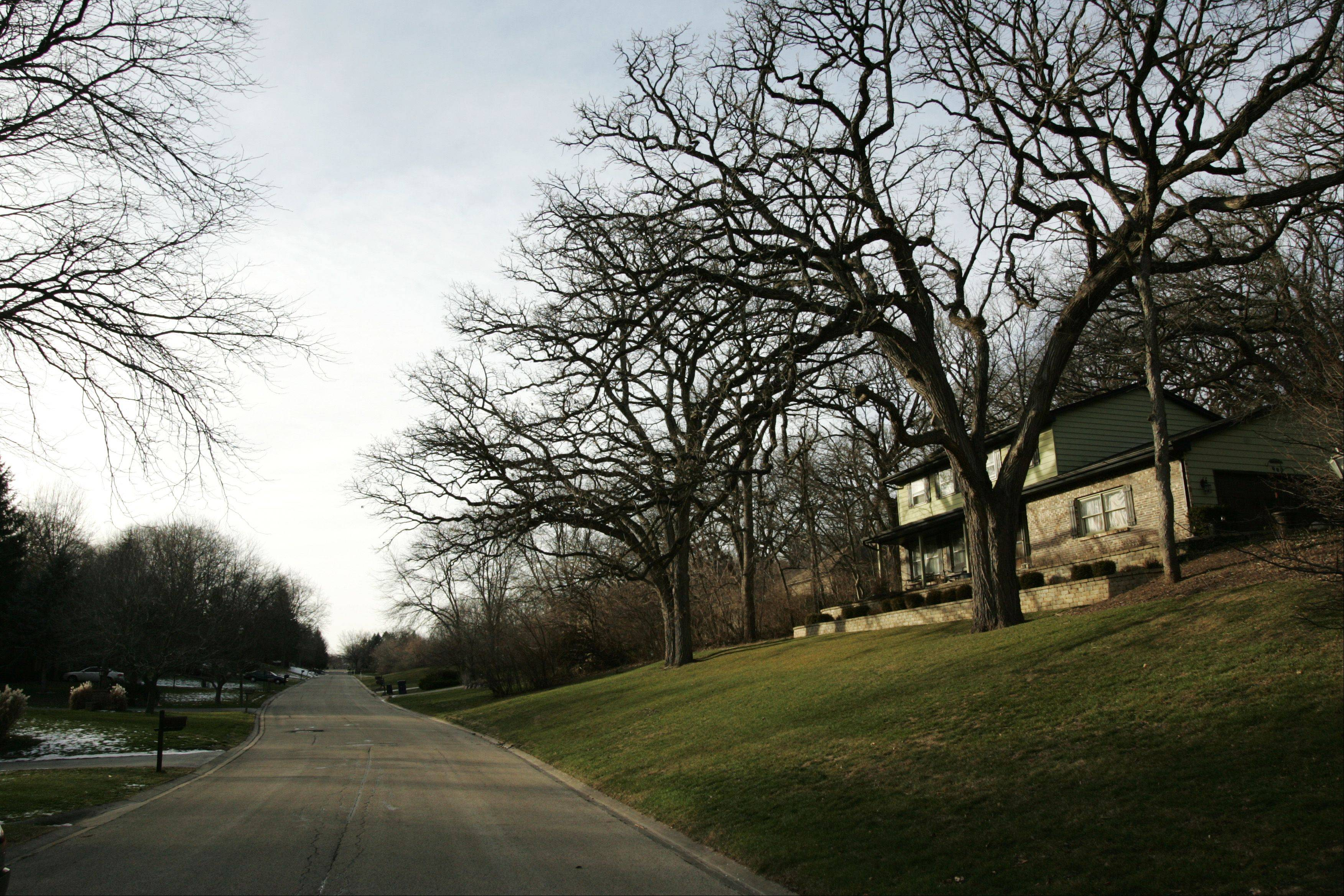 These homes along Surrey Lane in Gaslight Terrace show the large lots and rolling hills for which the area is known.