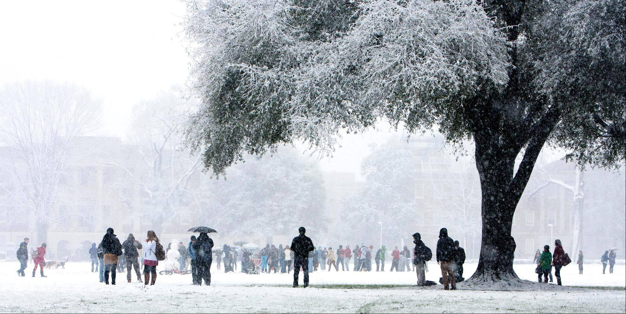Hundreds of students gathered at the quad of the University of Alabama campus on Thursday Jan. 17, 2012 as heavy snowfall coated Tuscaloosa, Ala.