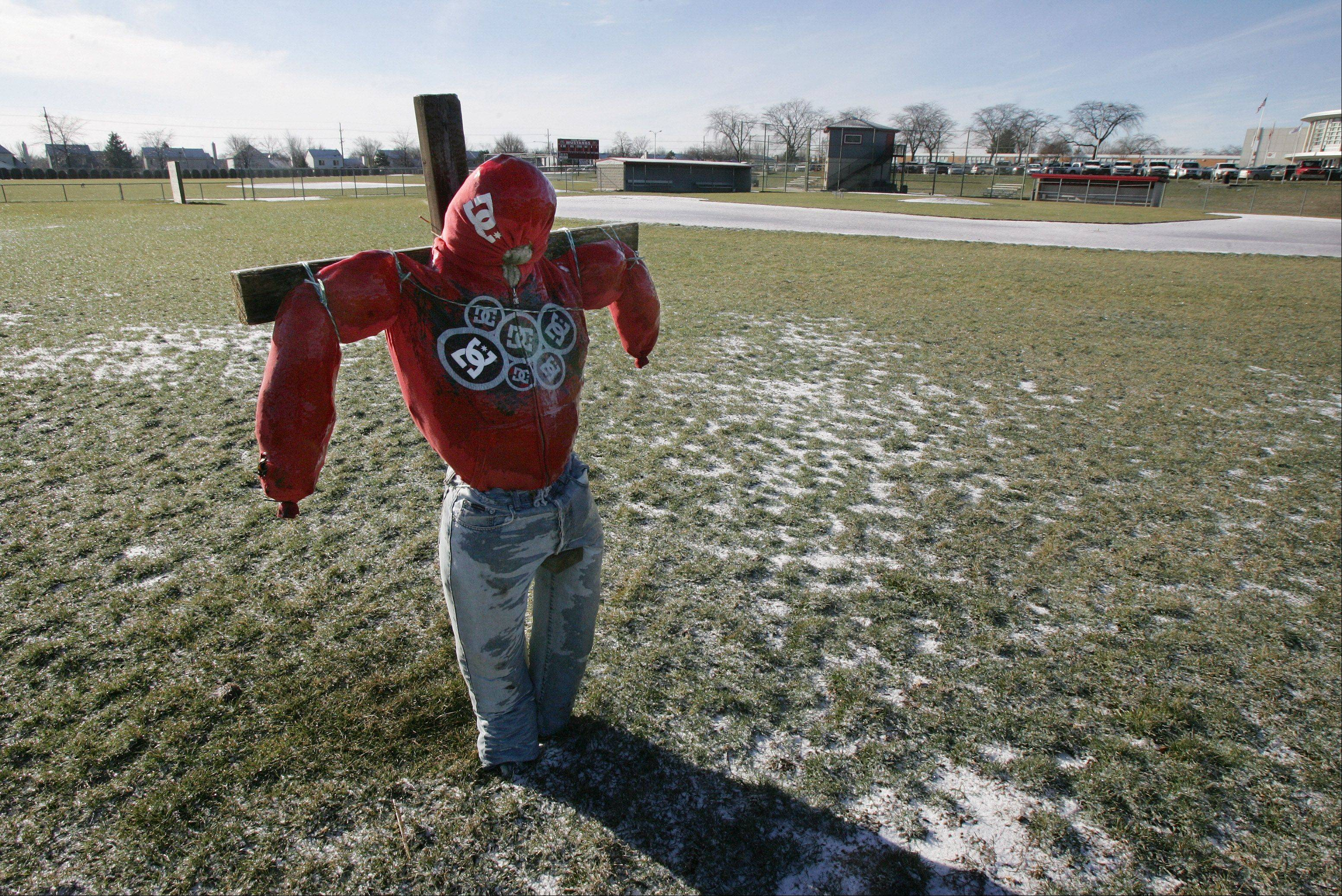 The high school version of a scarecrow is erected in centerfield of the baseball fields at Mundelein High School. Dressed in faded jeans and a red hoodie, the scarecrow is used to try to keep geese off the field. I am always on the lookout for the unusual and I spotted this stuffed object on a cross at the high school. I was taken by the care chosen in the clothing used on the scarecrow, and to the links that the high school took to try to eliminate the geese problem.