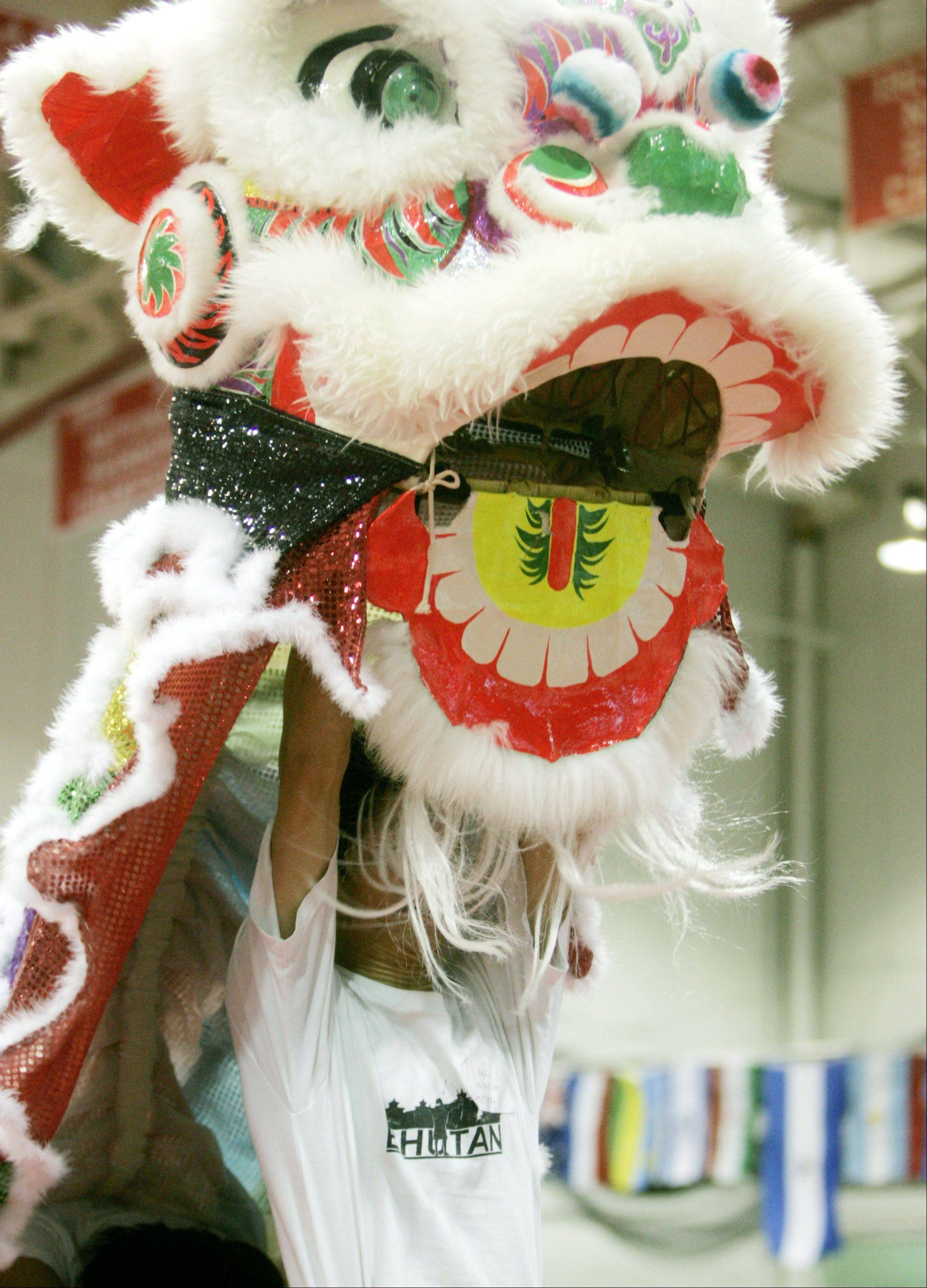 Visitors to North Central College's International Festival will get a close-up look at a variety of cultures.